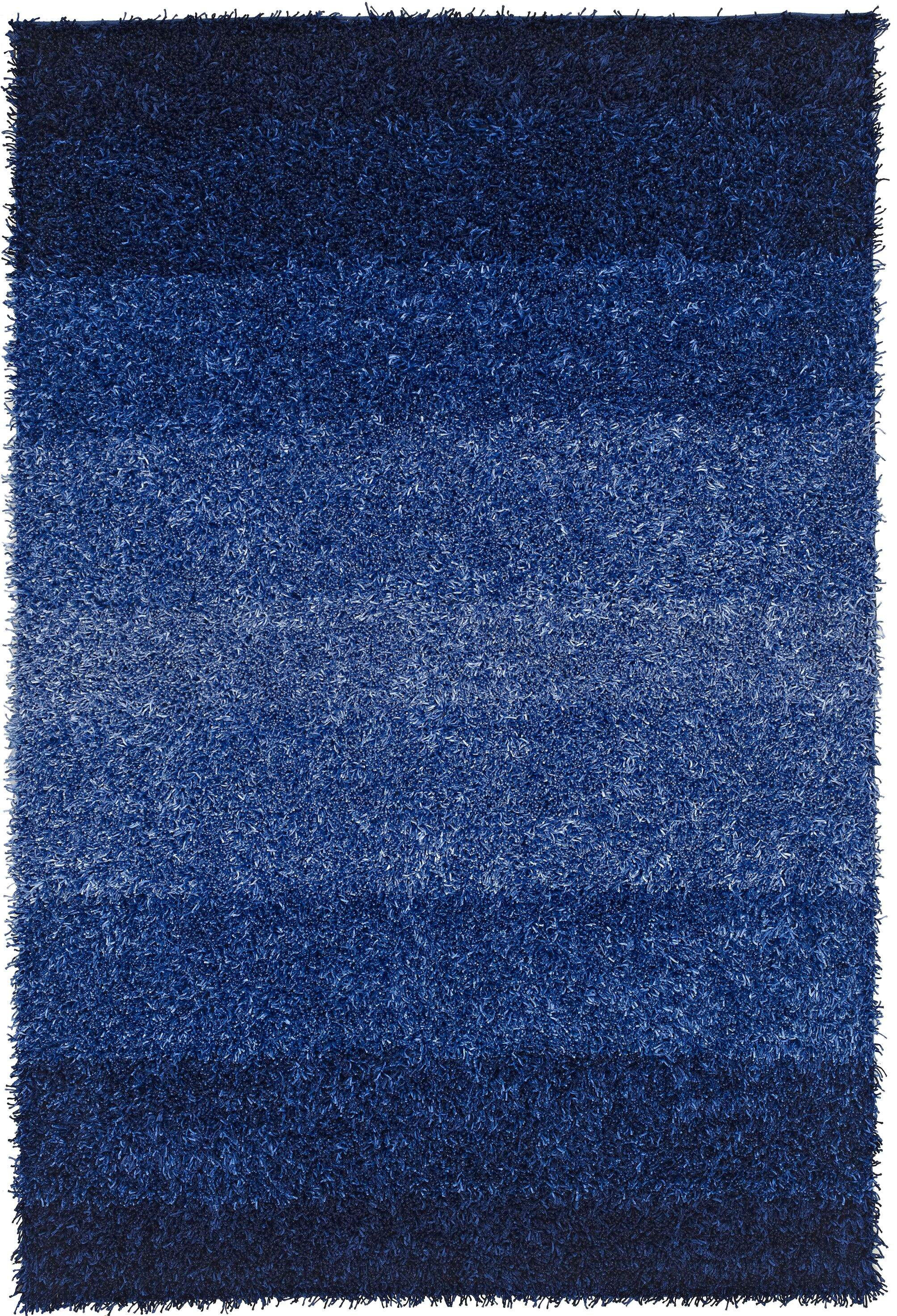 Nasiba Cobalt Area Rug Rug Size: Rectangle 9' x 13'