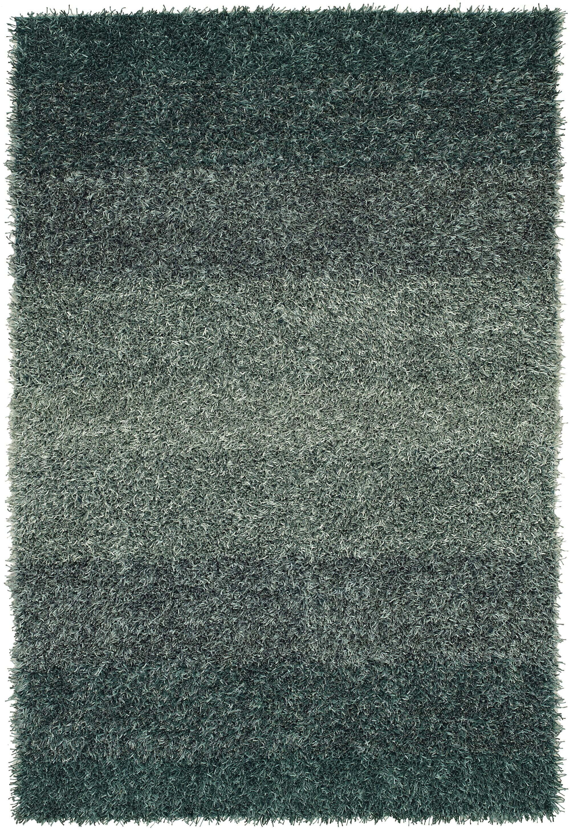 Nasiba Teal Area Rug Rug Size: Rectangle 3'6