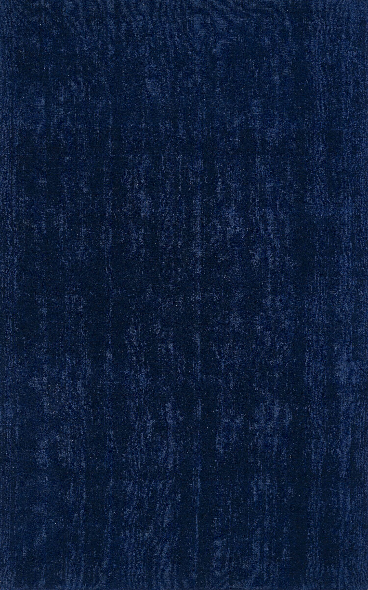Tasha Navy Area Rug Rug Size: 8' x 10'