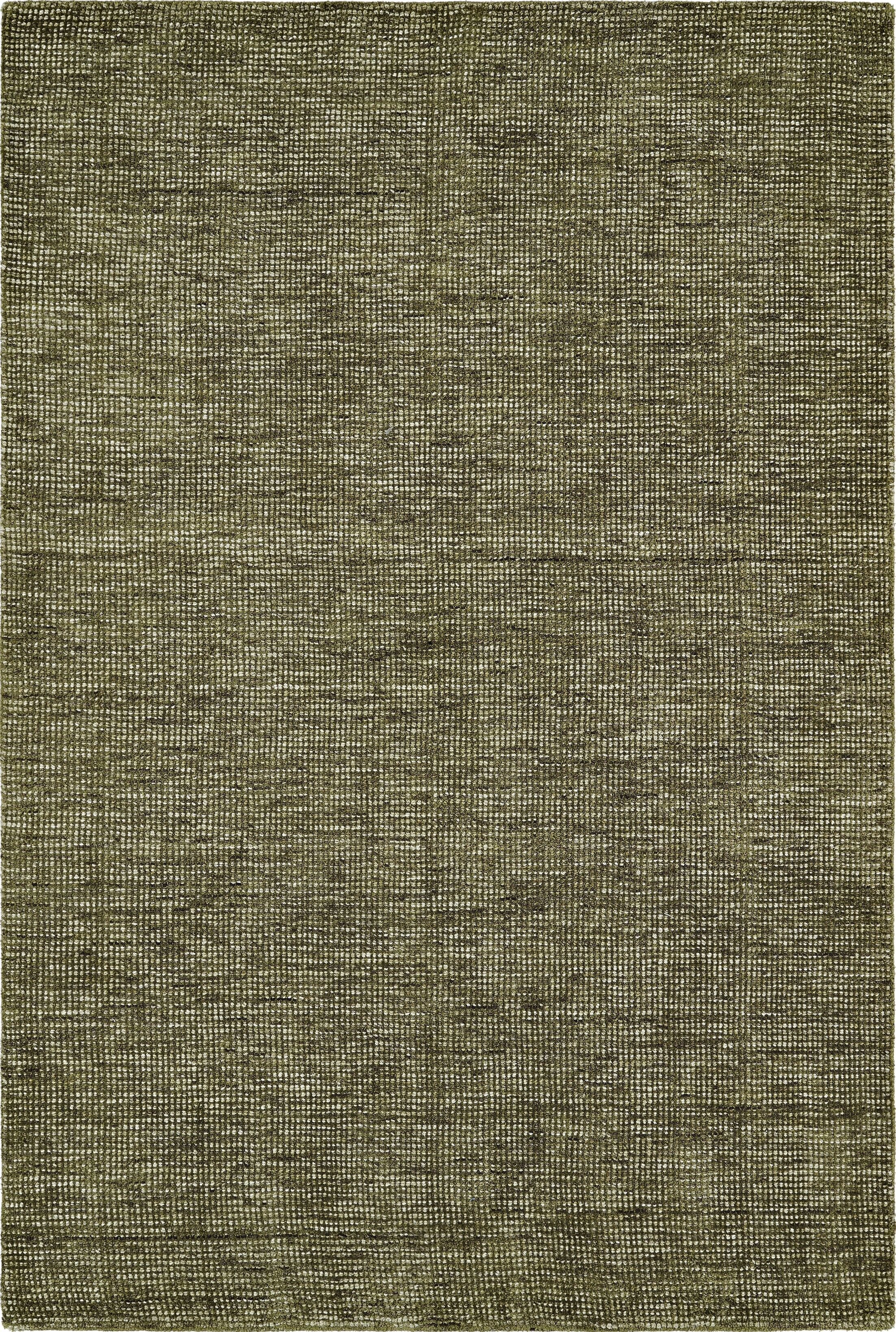 Toro Hand-Loomed Fern Area Rug Rug Size: Rectangle 3'6