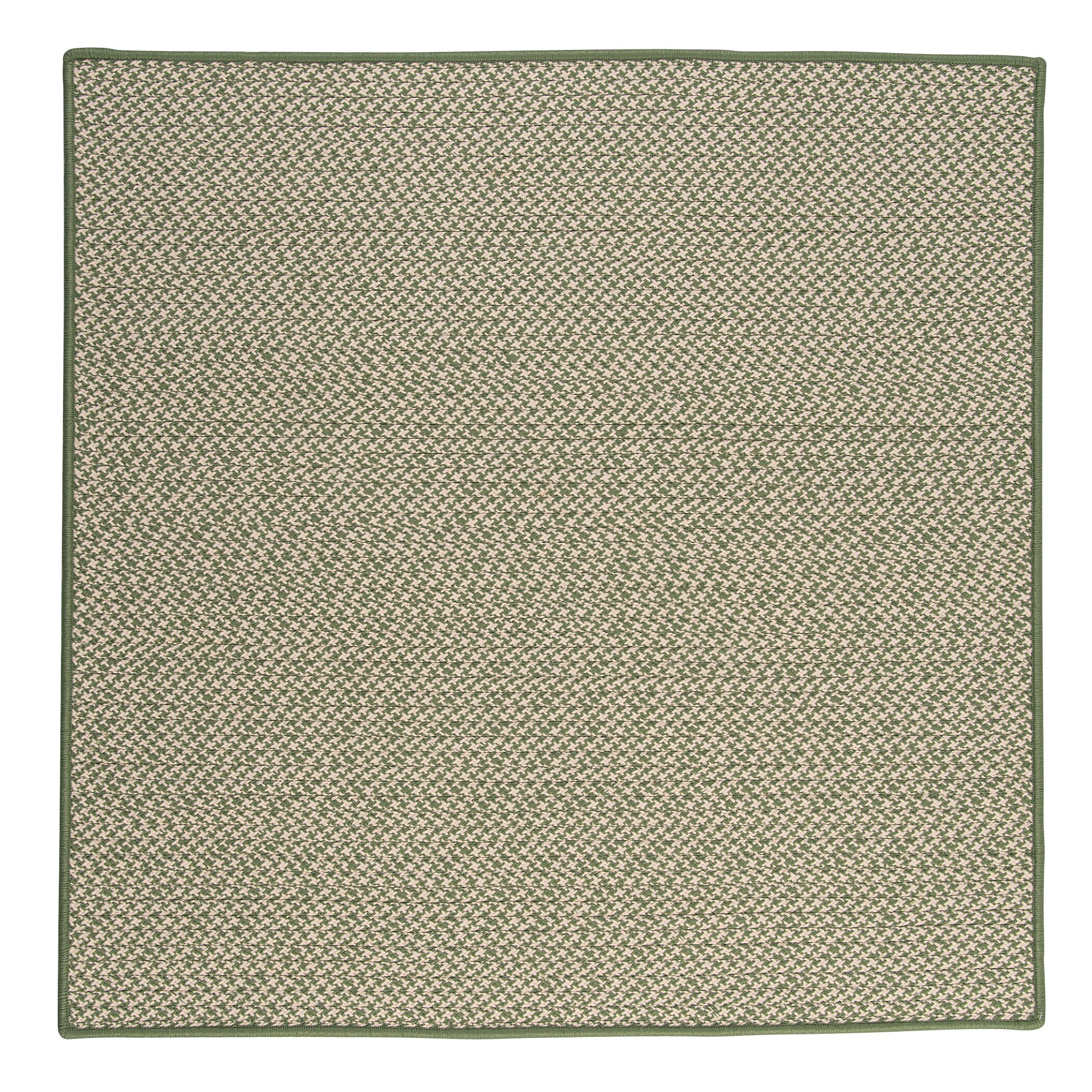 Outdoor Houndstooth Tweed Leaf Green Rug Rug Size: Square 4'