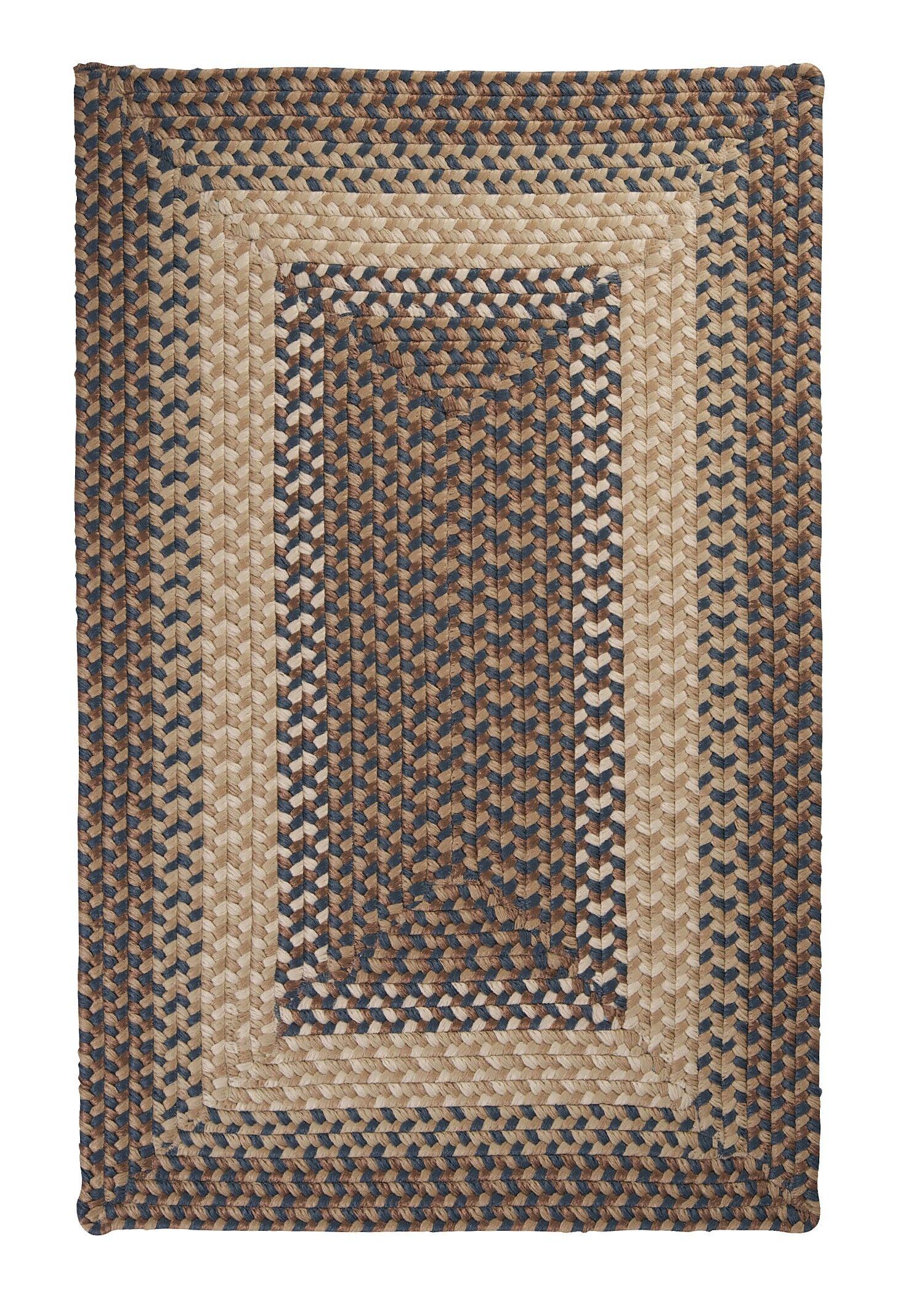 Tiburon Stone & Blue Braided Indoor/Outdoor Area Rug Rug Size: Rectangle 7' x 9'