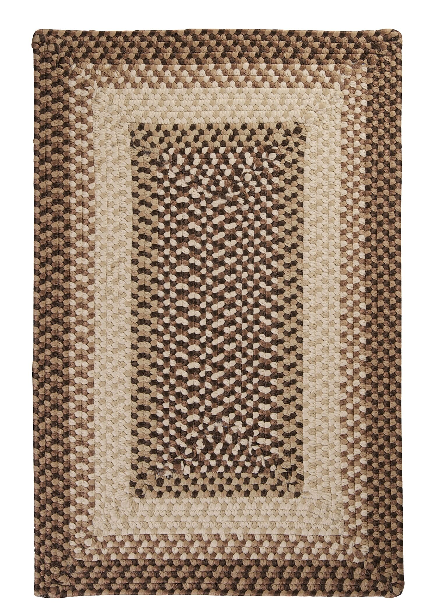 Tiburon Sandstorm Braided Indoor/Outdoor Area Rug Rug Size: Rectangle 4' x 6'