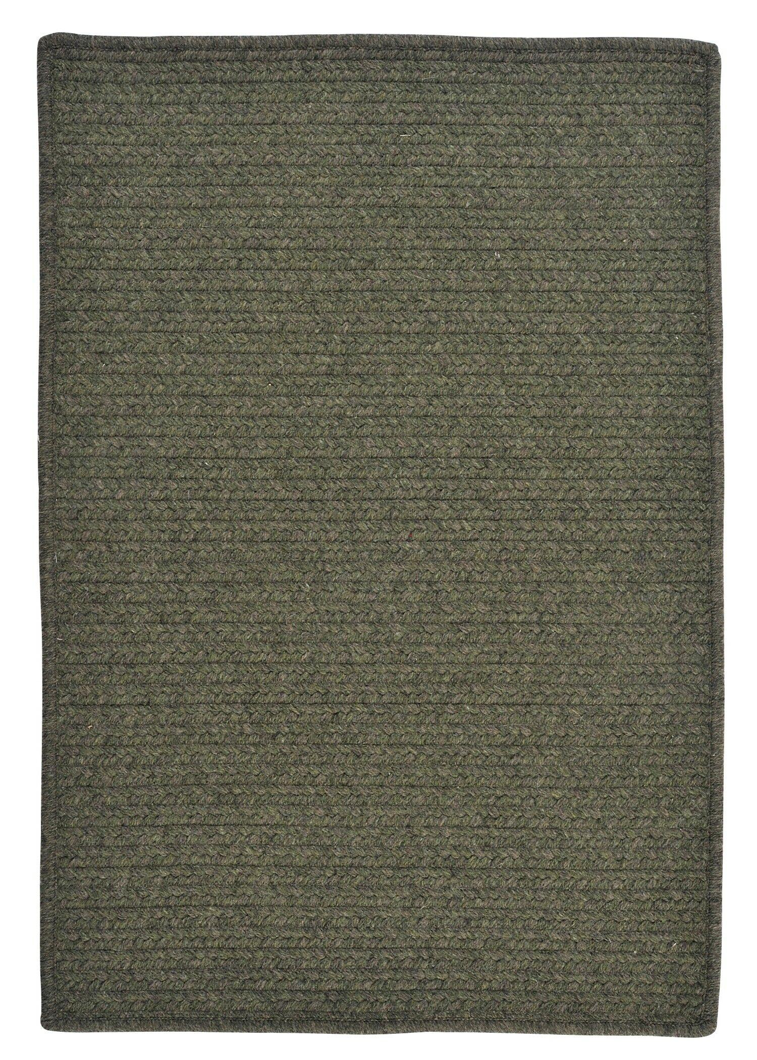 Courtyard Olive Rug Rug Size: Runner 2' x 12'