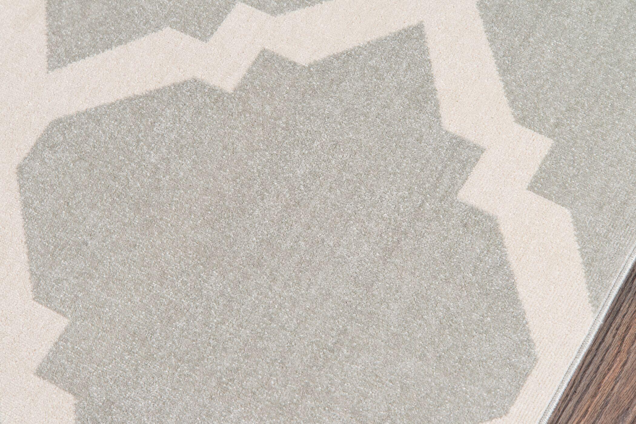 Arbonne Gray Indoor/Outdoor Area Rug Rug Size: Rectangle 5'3