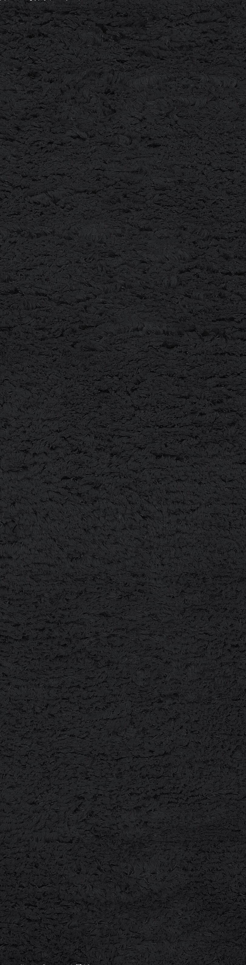 Gaston  Black Area Rug Rug Size: Runner 4' x 10'