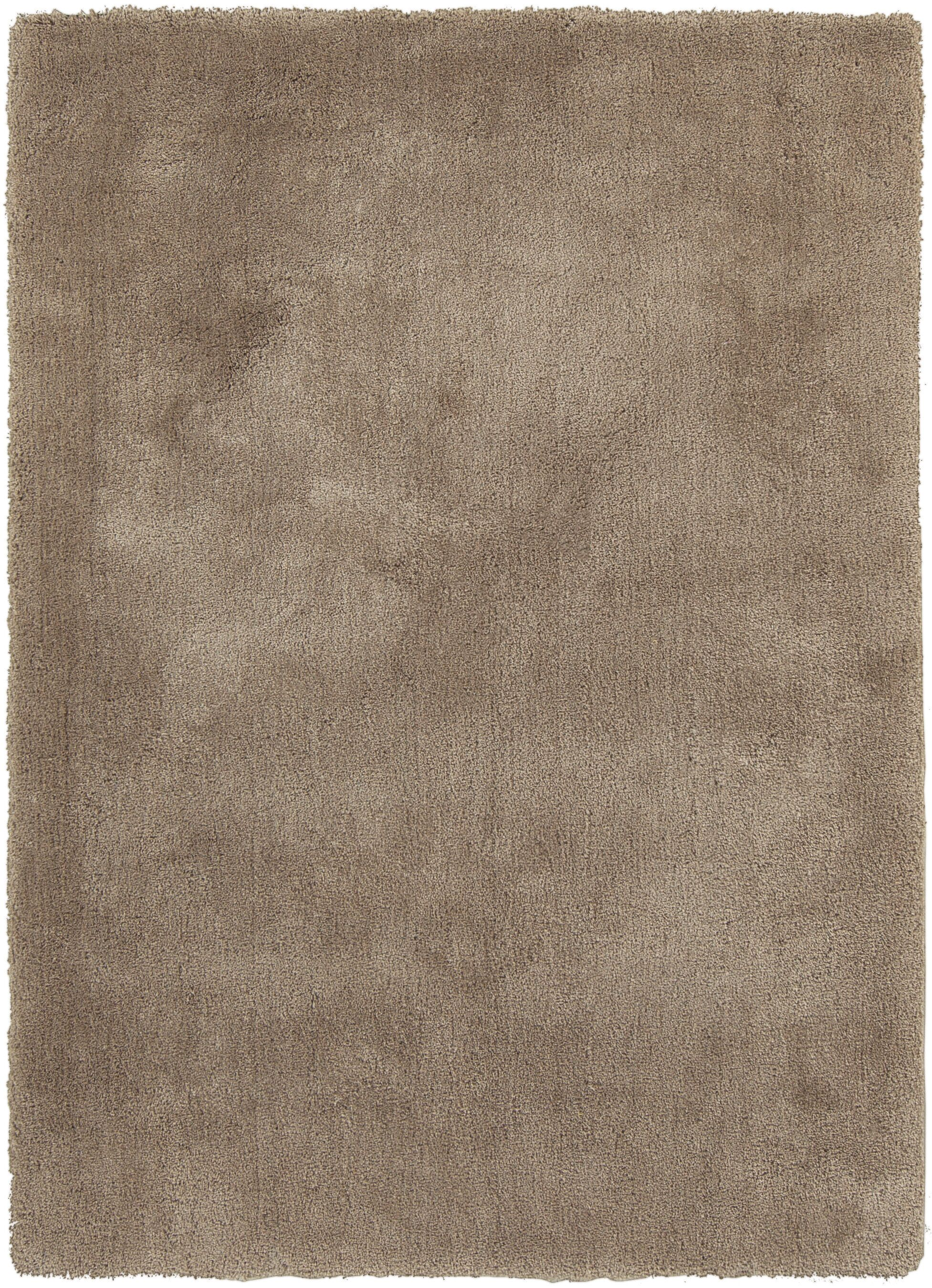 Braun Hand Woven Desert Sand Area Rug Rug Size: Rectangle 5' x 7'
