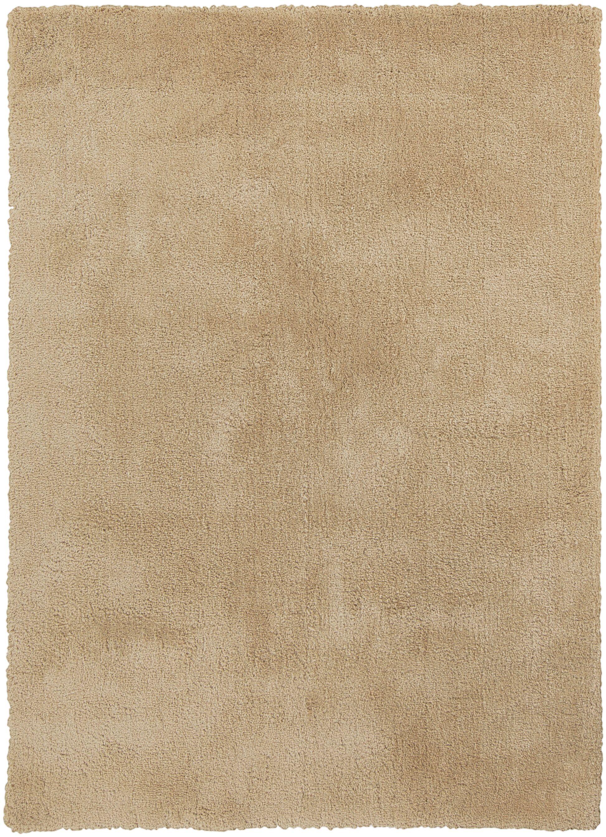 Braun Blond Area Rug Rug Size: Rectangle 8' x 11'