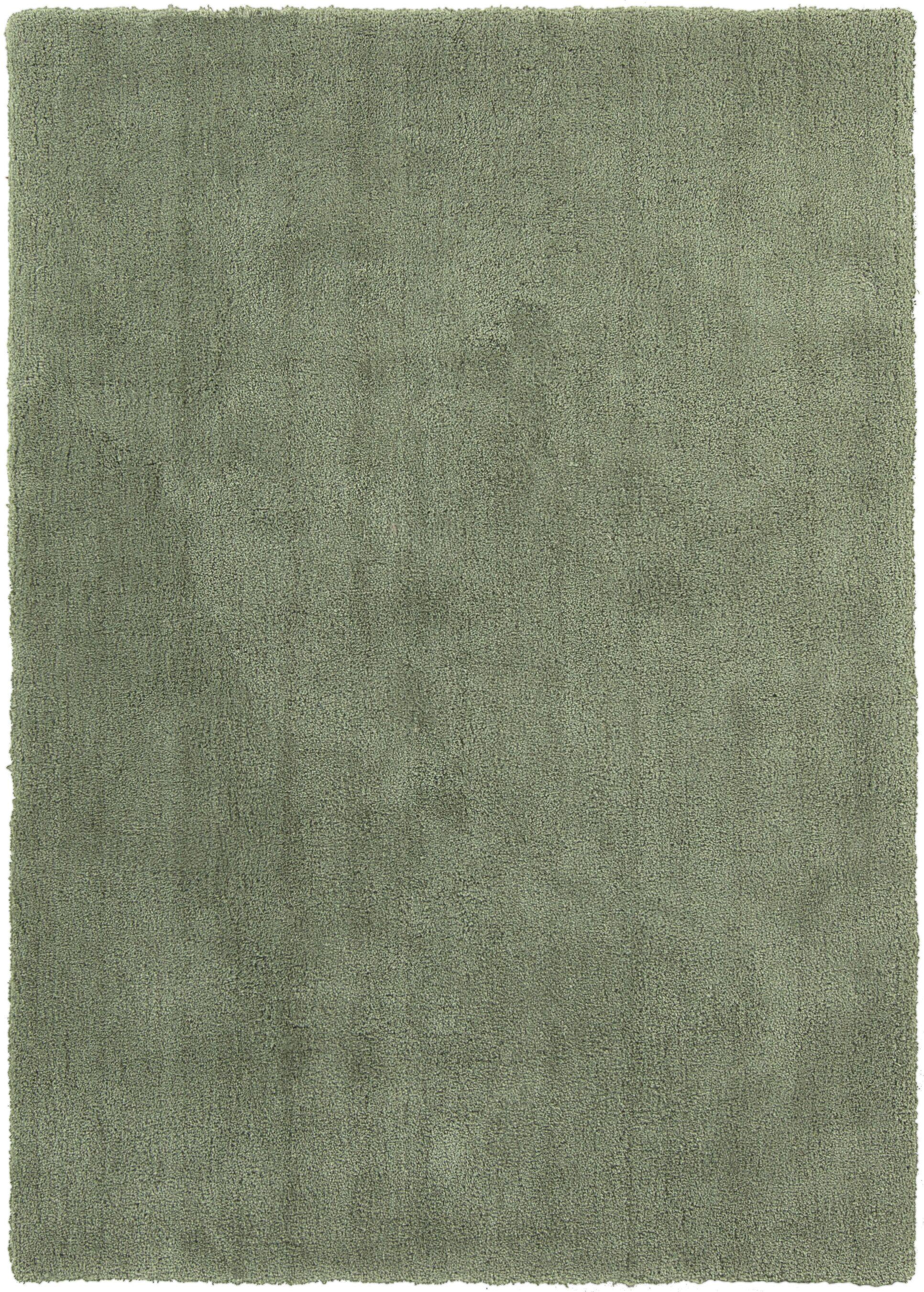 Braun Malachite Green Area Rug Rug Size: Rectangle 5' x 7'