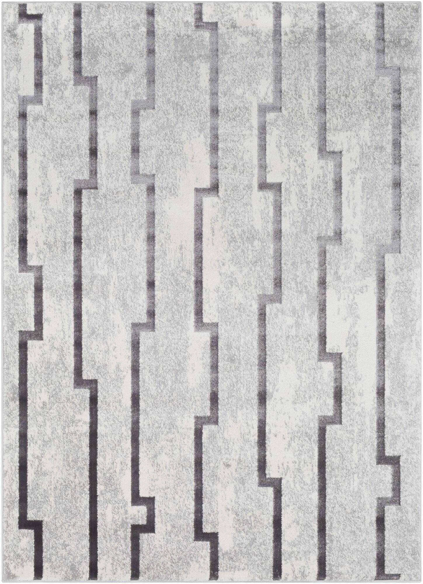 Salazar Transitional Gray Area Rug Rug Size: Rectangle 5'3