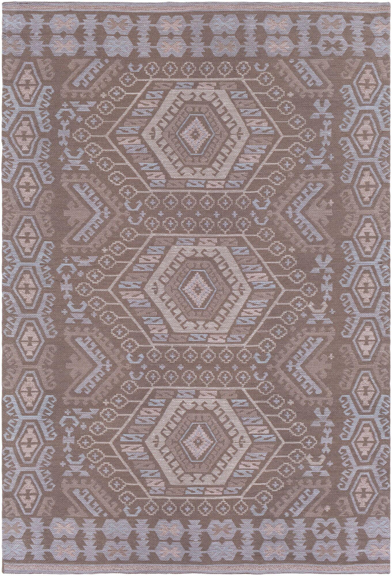 Sturbridge Hand Woven Brown Outdoor Area Rug Rug Size: Rectangle 4' x 6'
