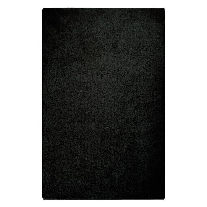 Braun Hand Woven Coal Black Area Rug Rug Size: Rectangle 3' x 5'