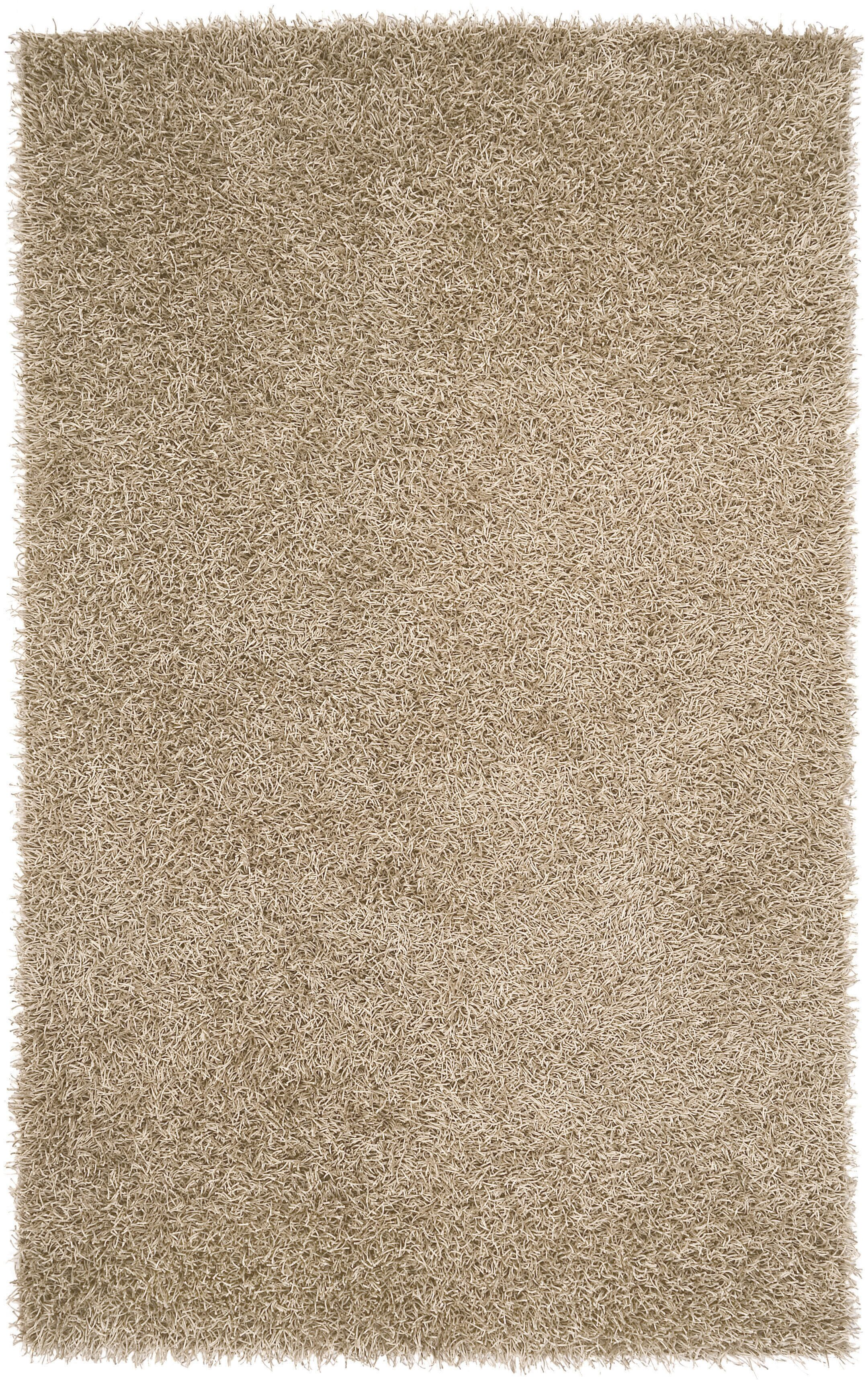 Bonomo Beige Area Rug Rug Size: Rectangle 3'6