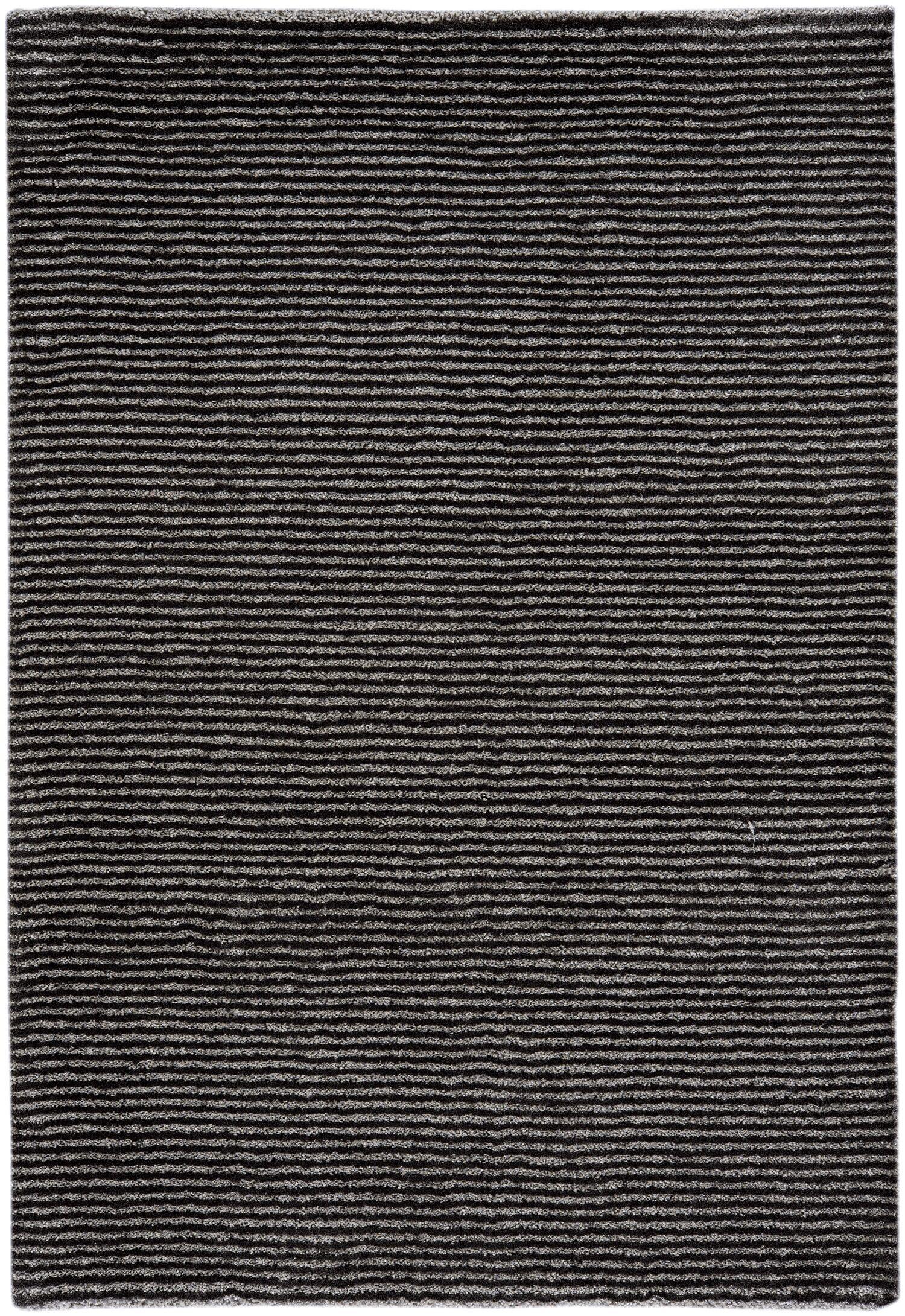 Gravitation Black Area Rug Rug Size: 7'10