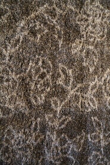 Passion Grey Rug Rug Size: Rectangle 6'7