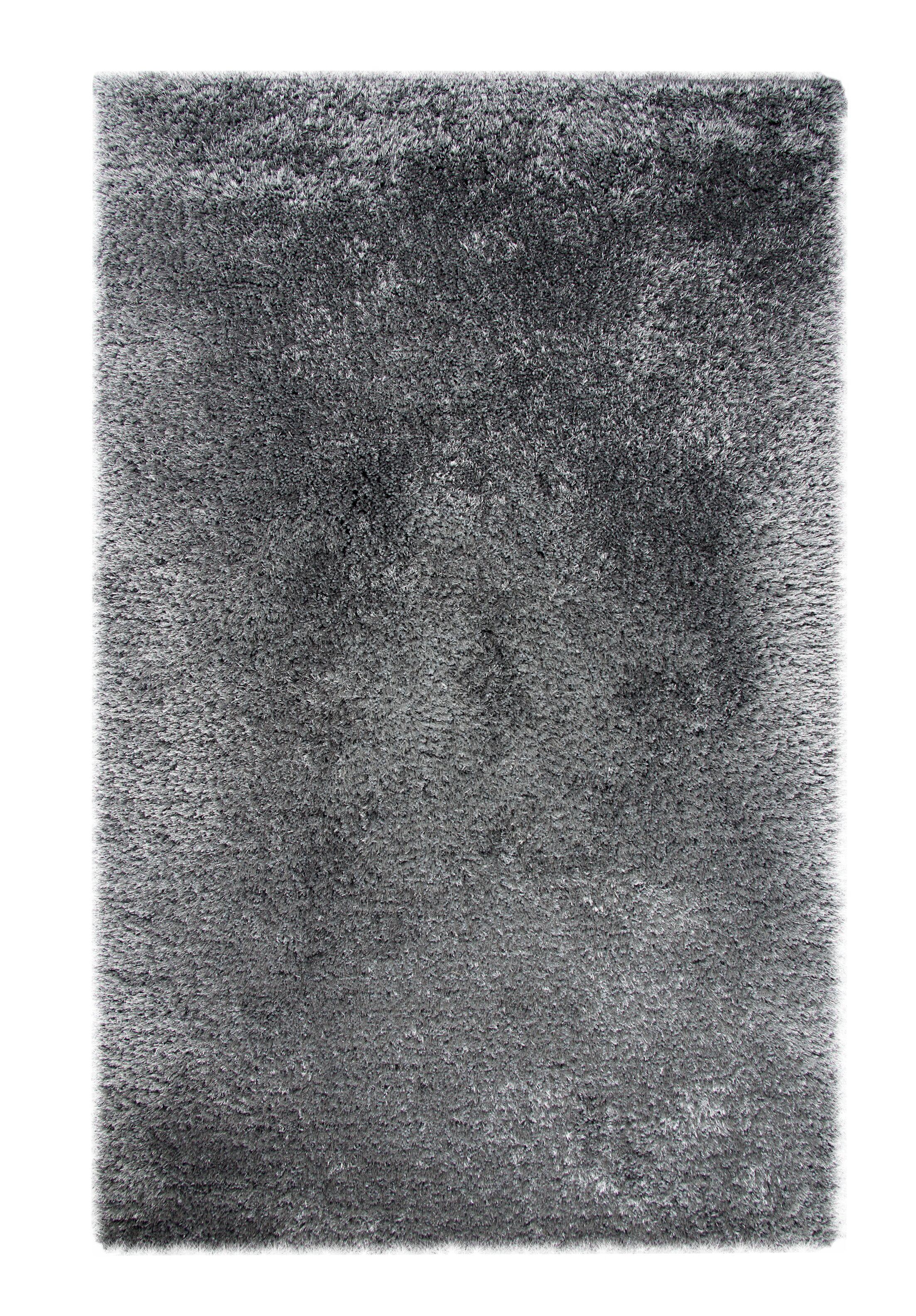 Precious Gray Area Rug Rug Size: Rectangle 10' x 14'