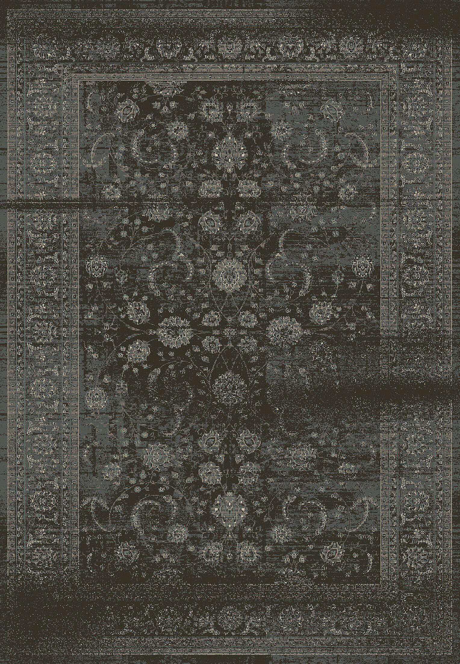Eaman Antique Gray Area Rug Rug Size: Rectangle 3'6