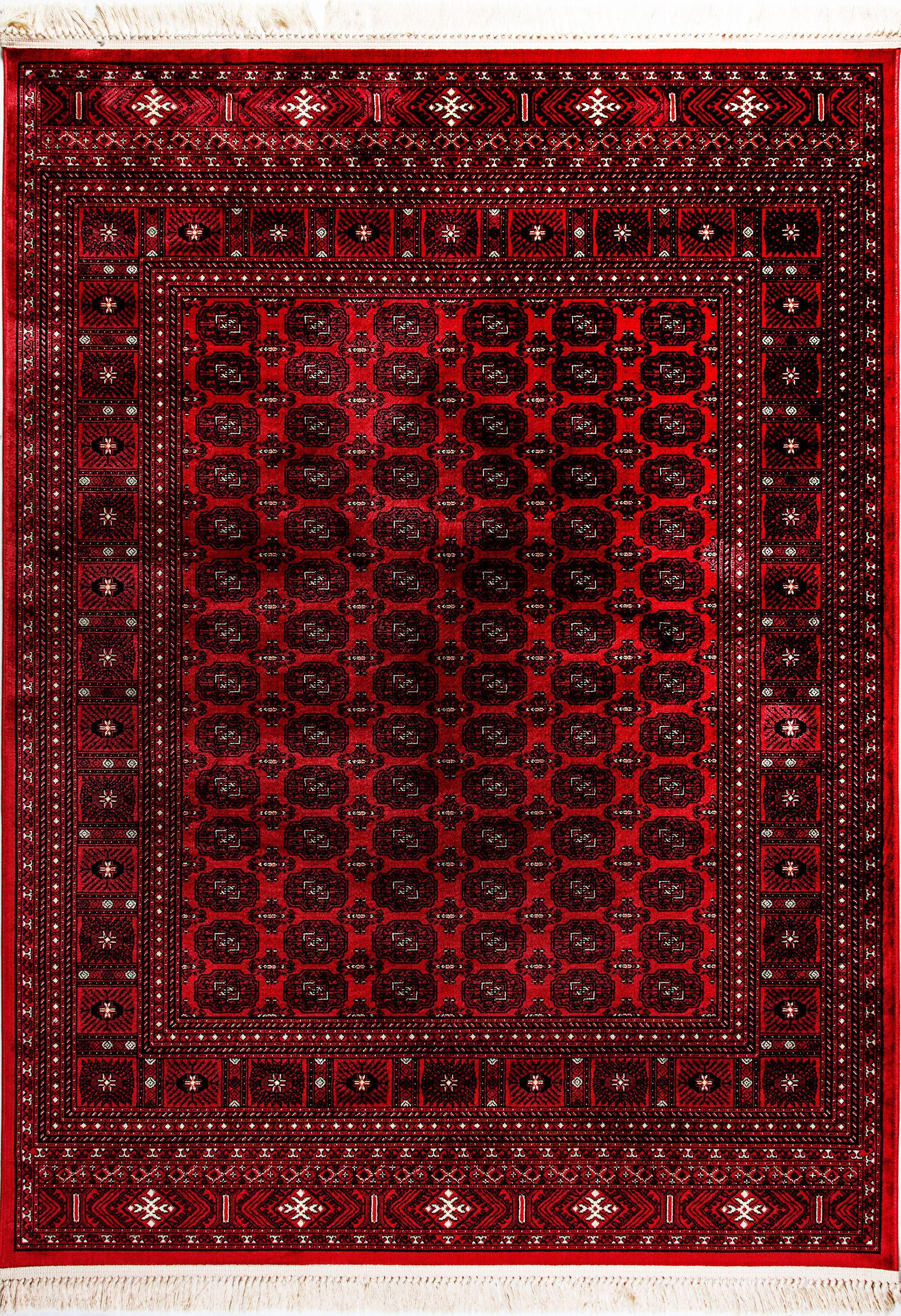 Solange Red Area Rug Rug Size: Rectangle 7'10