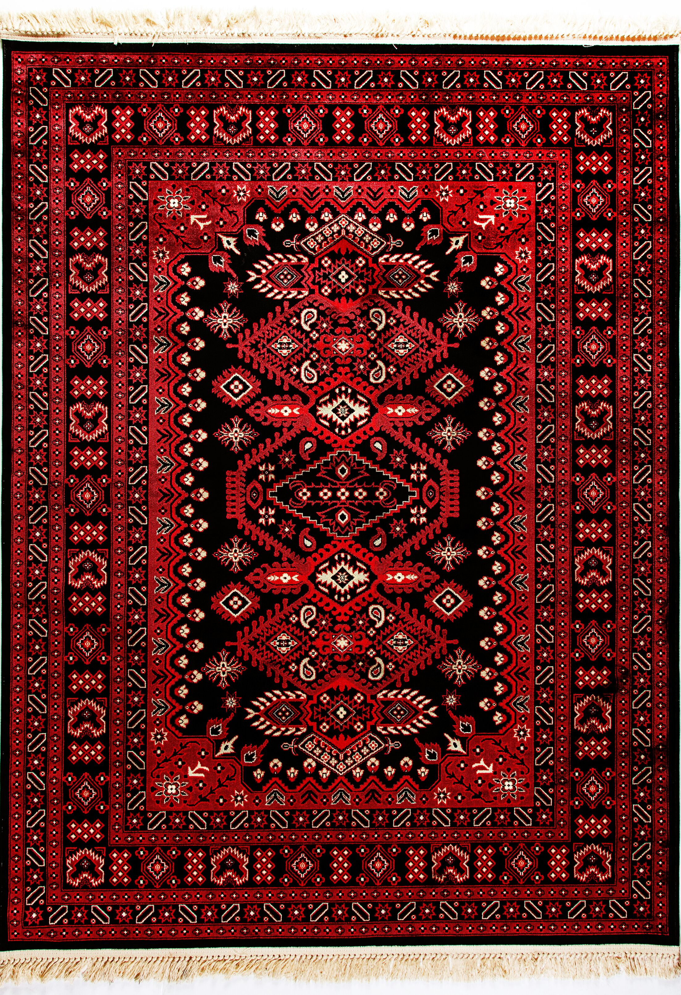 Elmirasol Red Area Rug Rug Size: Rectangle 6'7
