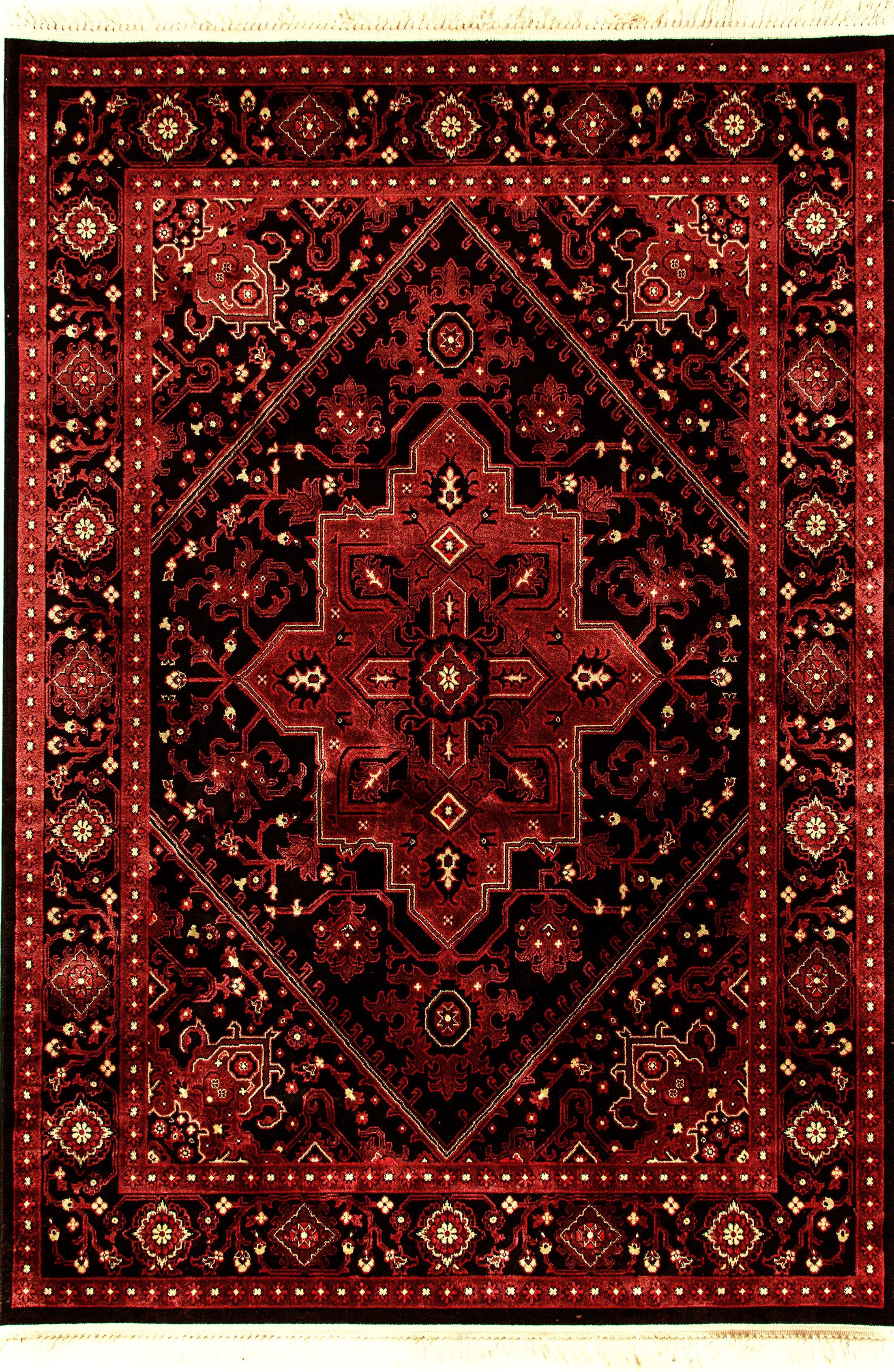 Solange Red/Black Area Rug Rug Size: Rectangle 7'10