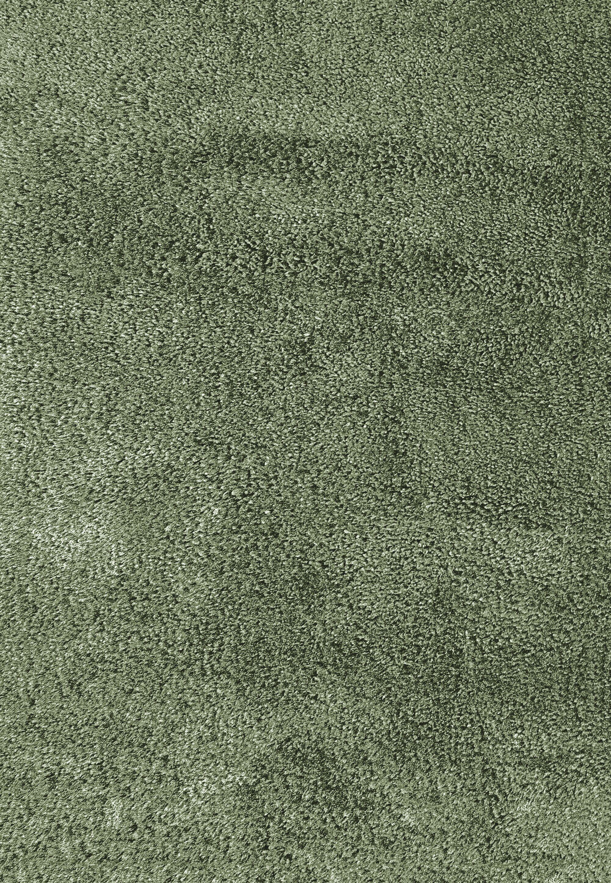 Luxury Shag Hand Tufted Light Green Area Rug Rug Size: Rectangle 8' x 10'