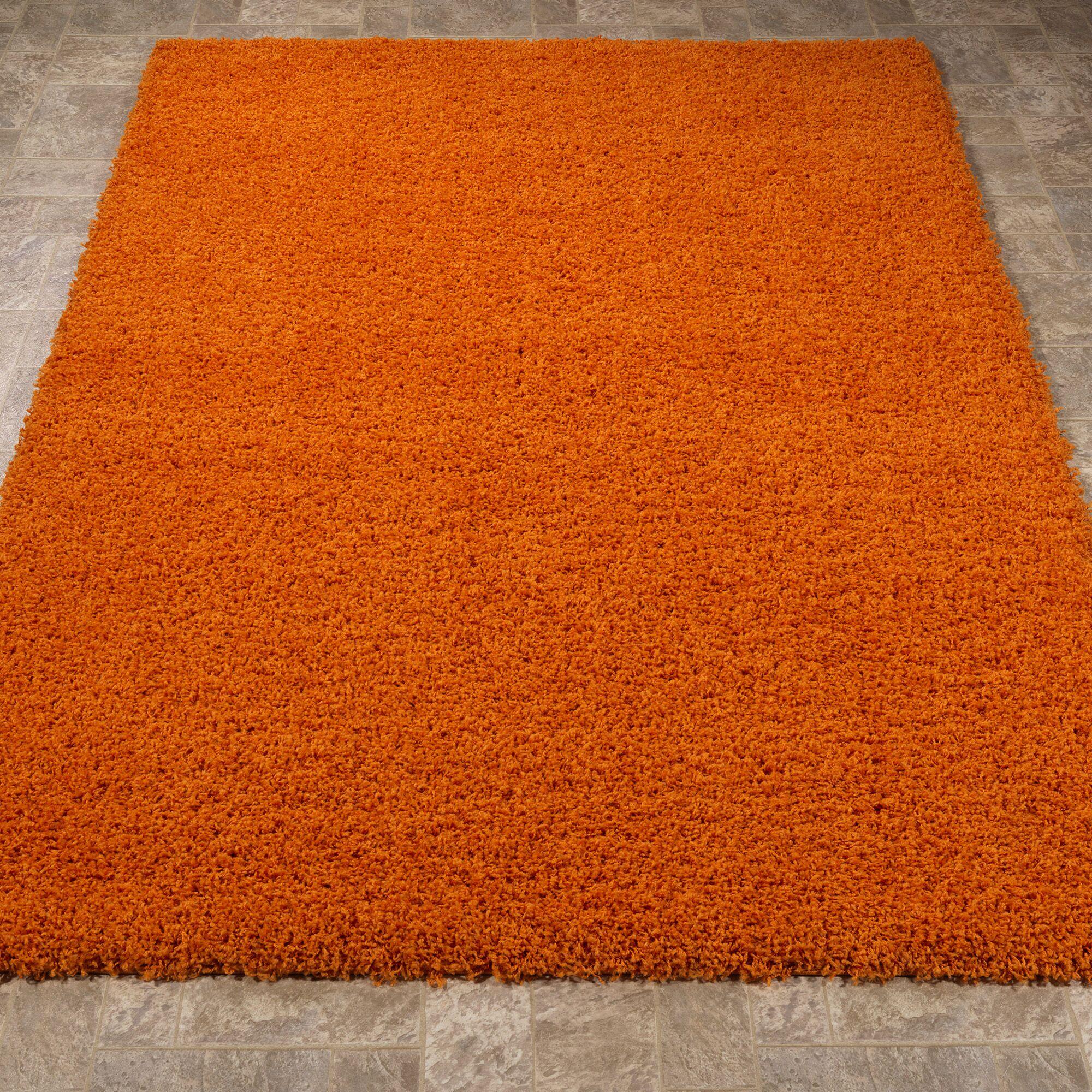 Cozy Orange Indoor/Outdoor Area Rug Rug Size: 5' x 7'