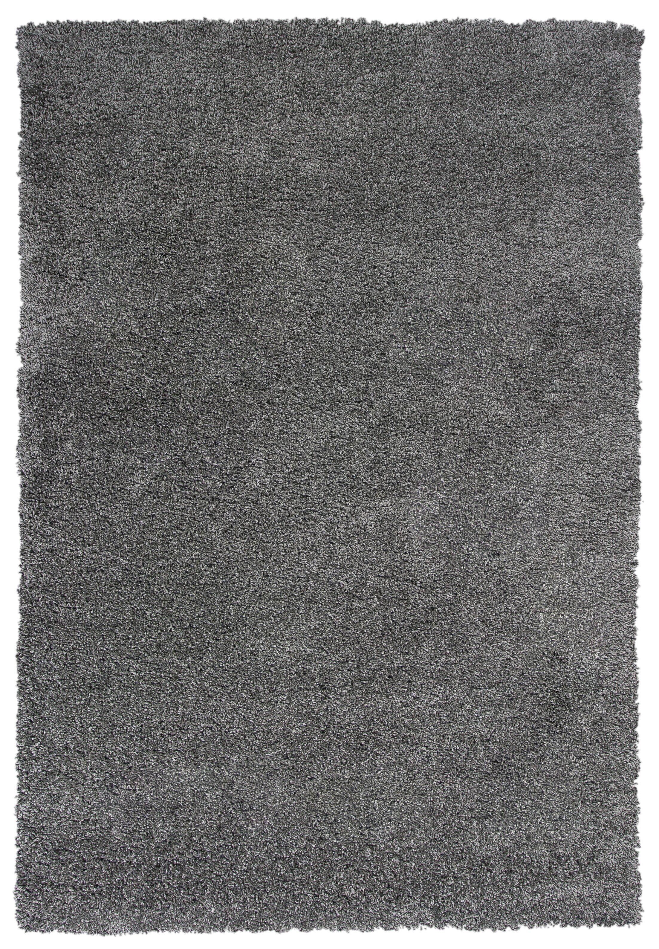 Electra Gray Area Rug Rug Size: 7'10