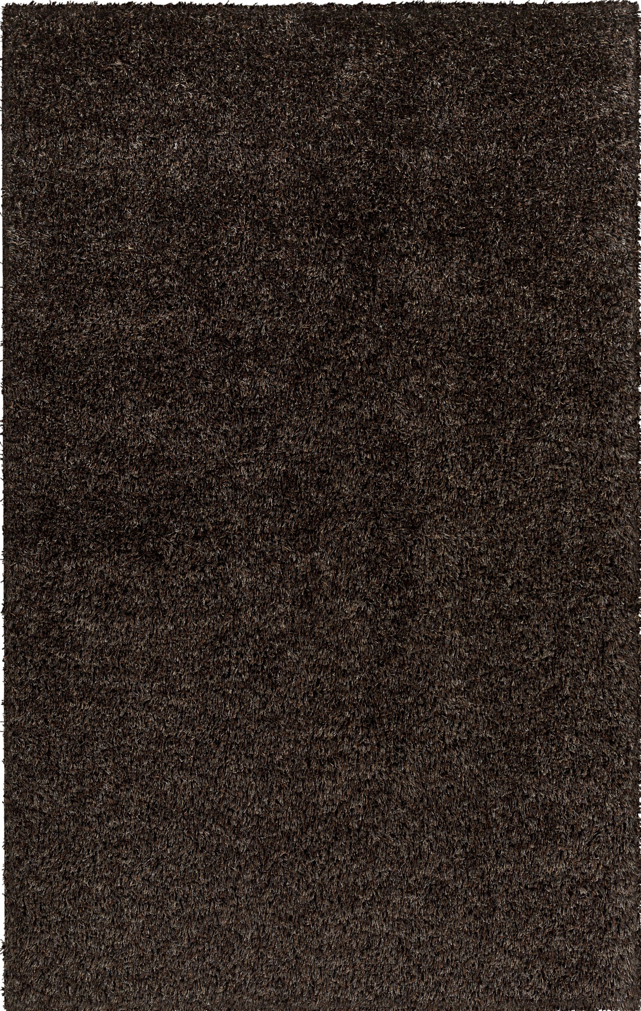Birkholz Dark Brown Area Rug Rug Size: Rectangle 4' x 6'