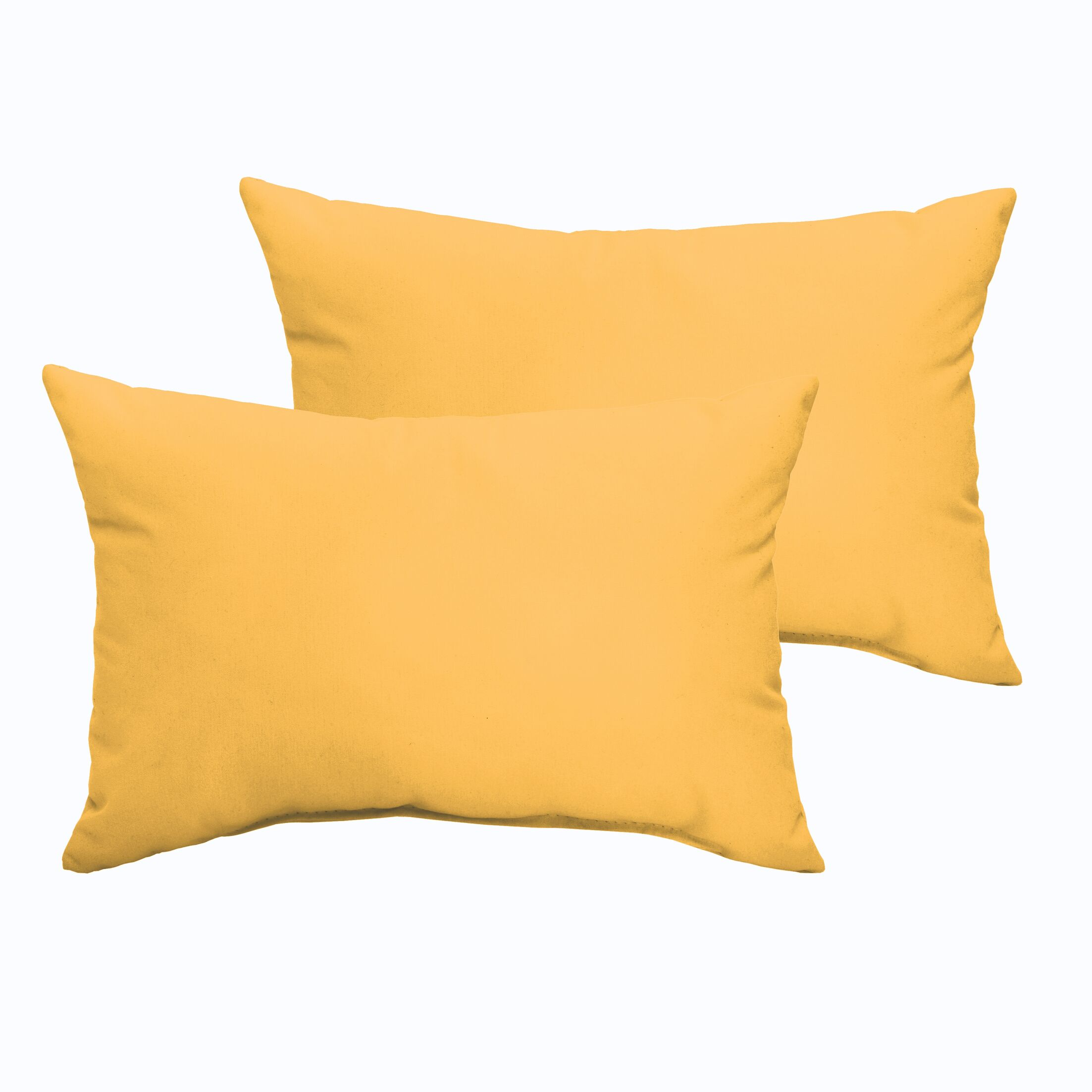 Branan Indoor/Outdoor Pillow Set Color: Butter Yellow