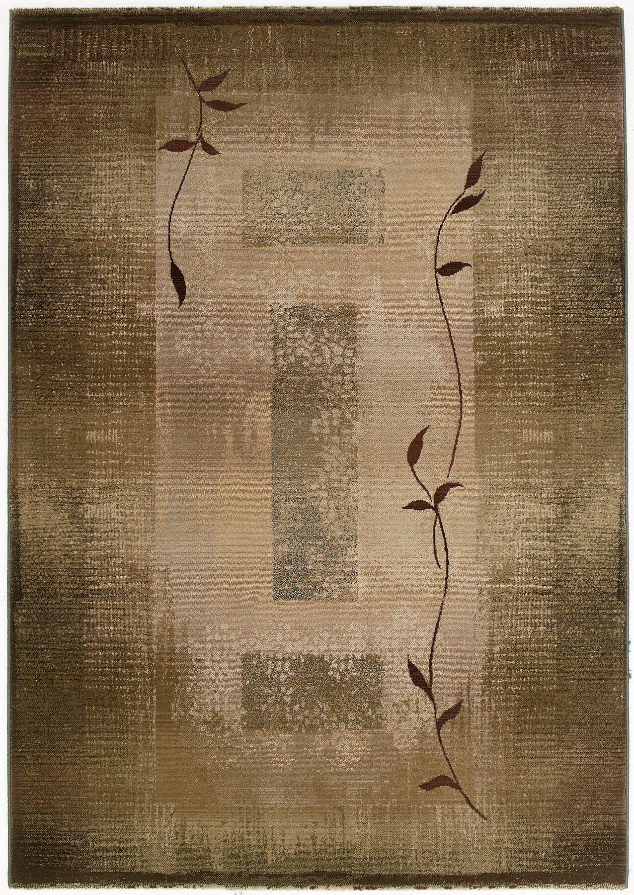 Bogard Brown/Green Area Rug Rug Size: Rectangle 5'3