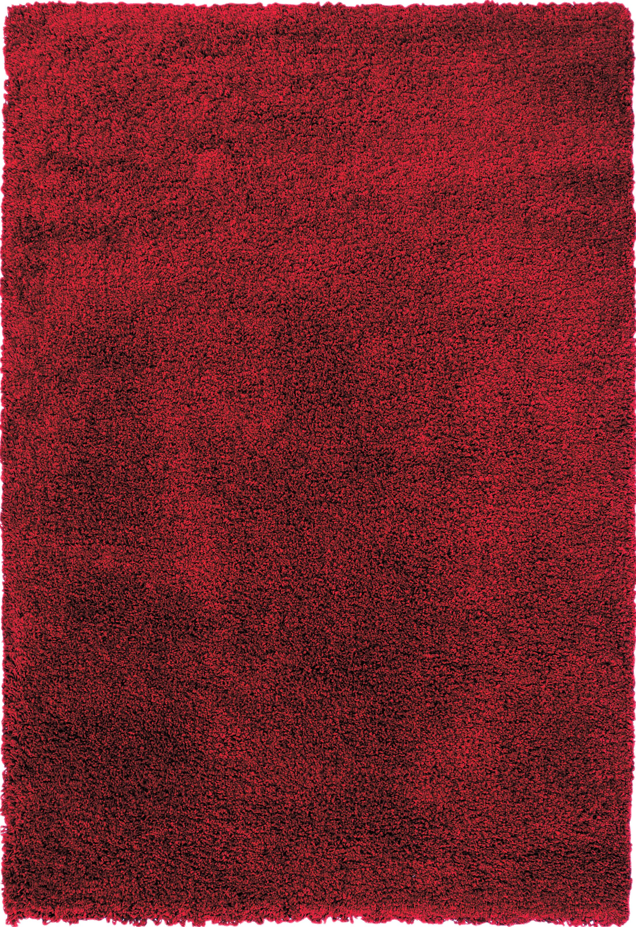 Lionel Red Area Rug Rug Size: 7'9