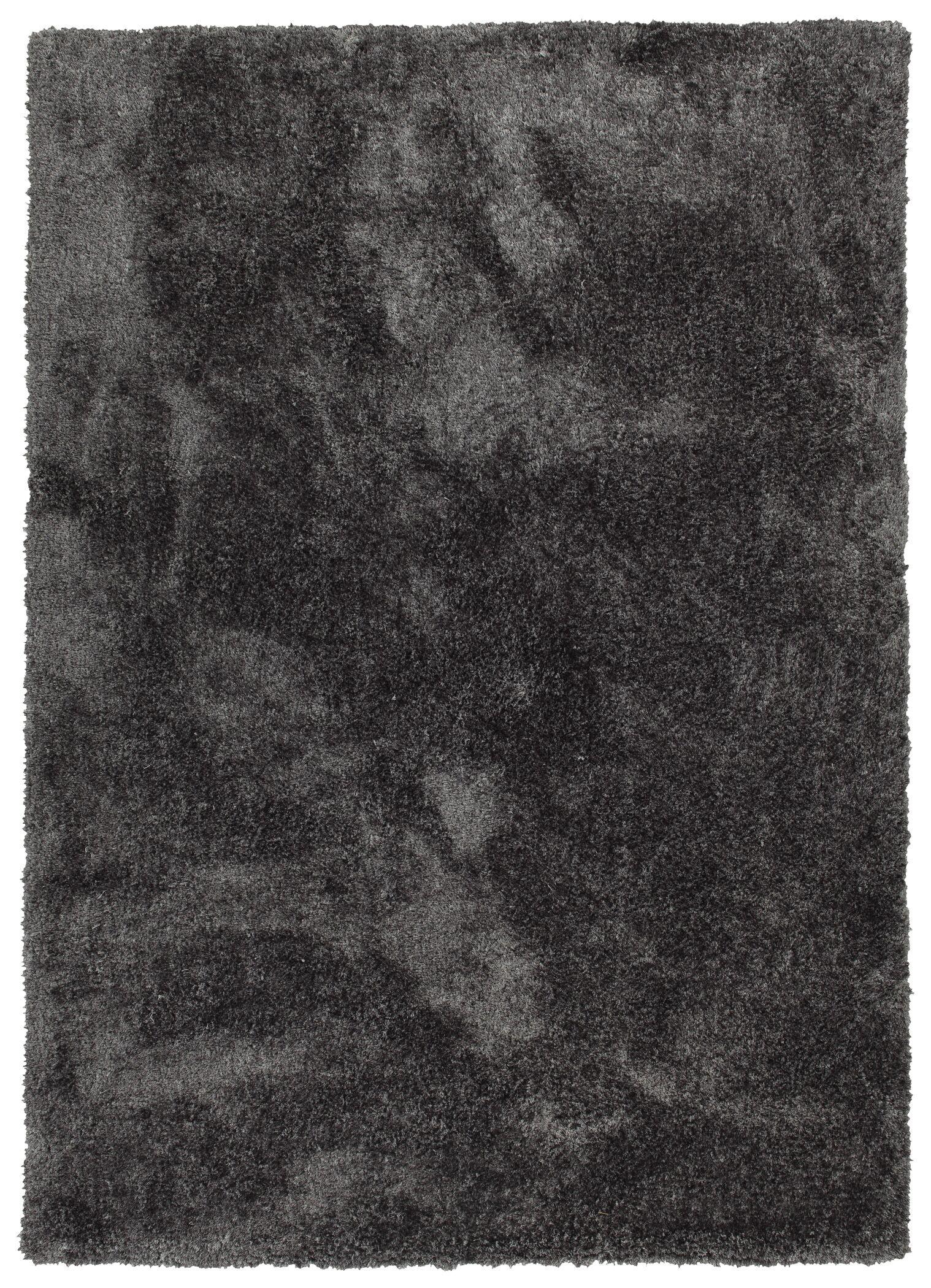 Bieber Handmade Shag Charcoal Area Rug Rug Size: Rectangle 9' x 12'