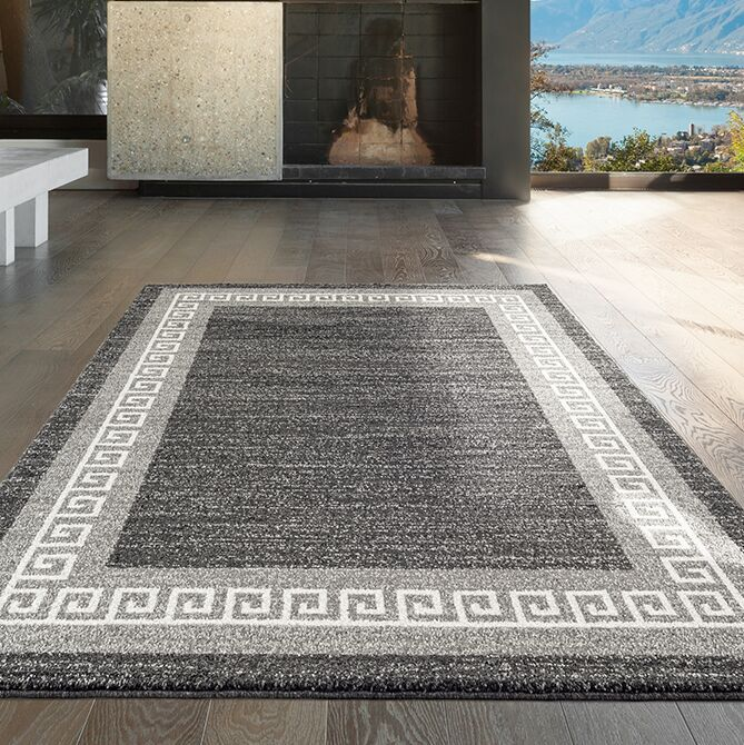 Gries Anthracite/Gray Area Rug Rug Size: Rectangle 7'10