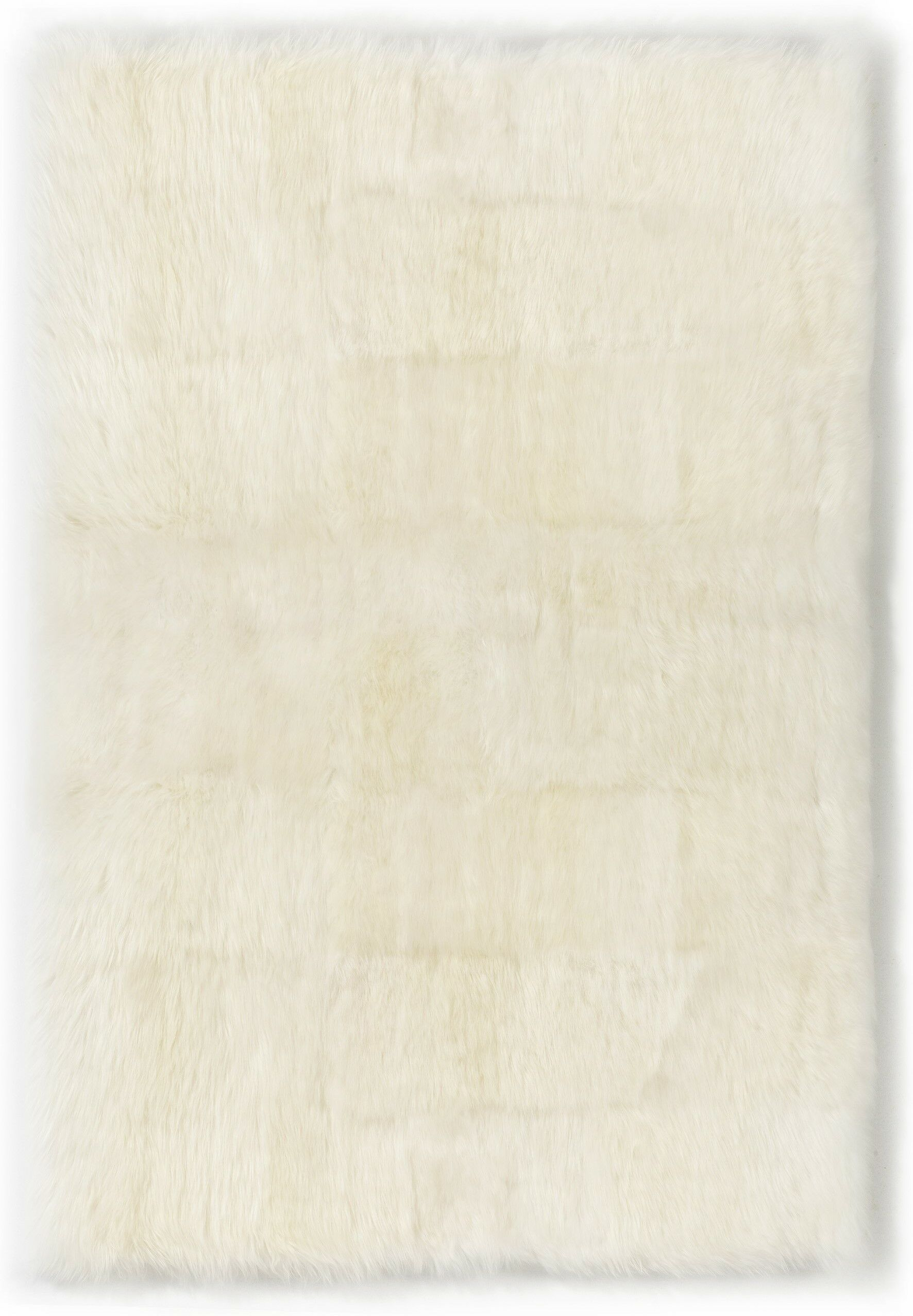 Straight Edge Ivory Area Rug Rug Size: 4' x 6'