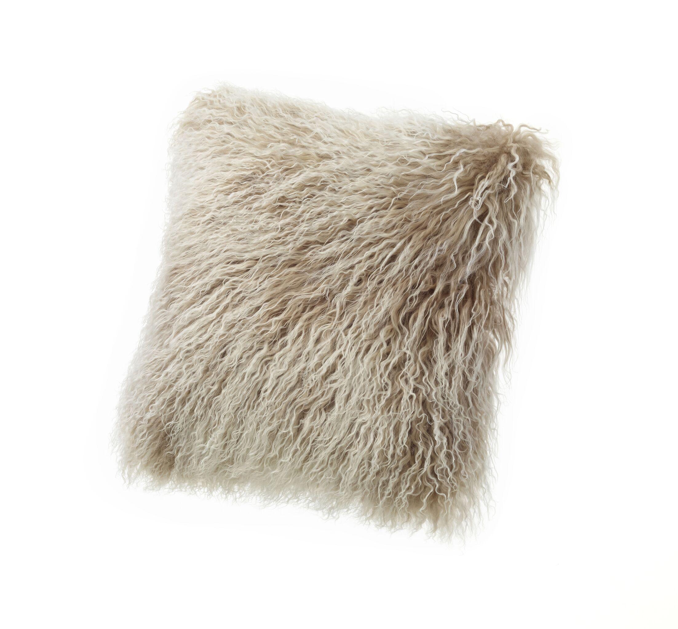 Velvet Throw Pillow Color: Shell, Size: 20