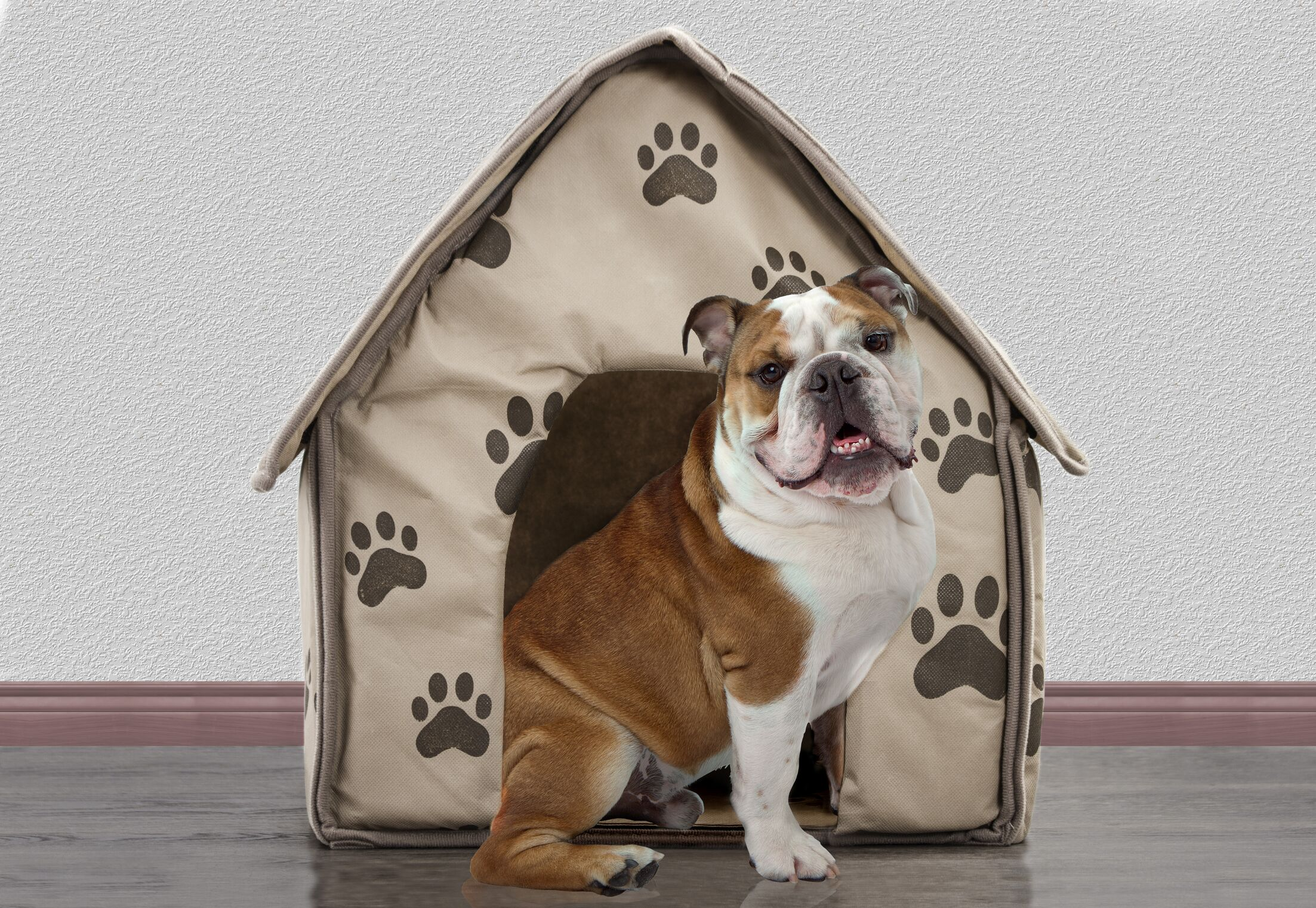 Colonel Portable Decorative Comfortable Hooded Dog Bed