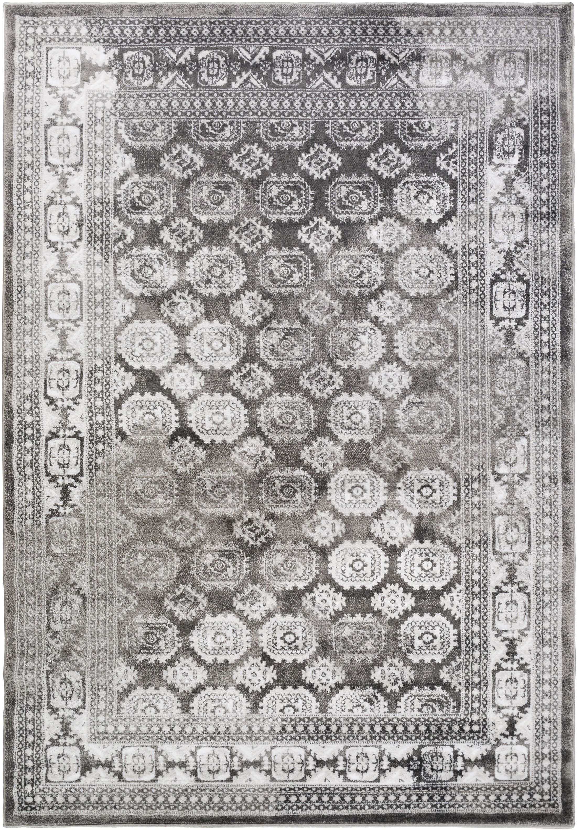 Broadview Gray Area Rug Rug Size: Rectangle 5'2