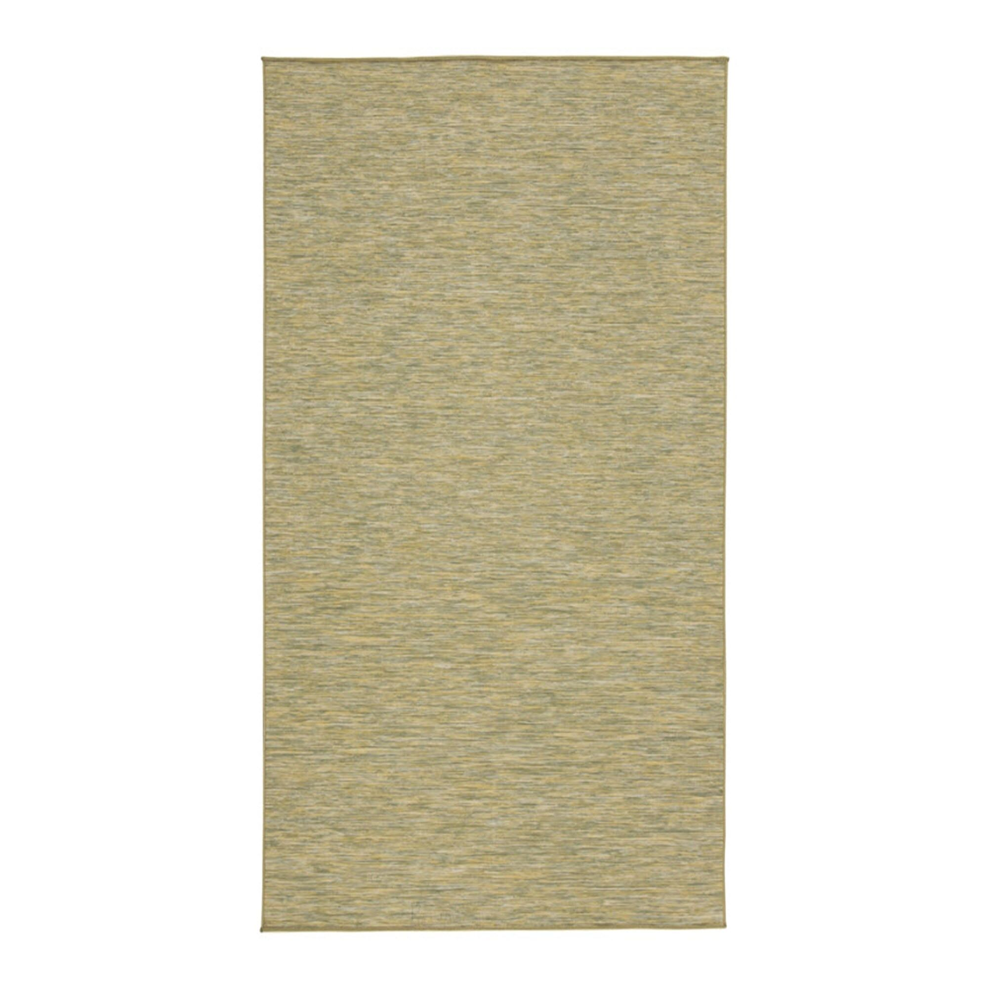 Koger Green Indoor/Outdoor Area Rug Rug Size: Rectangle 7'6