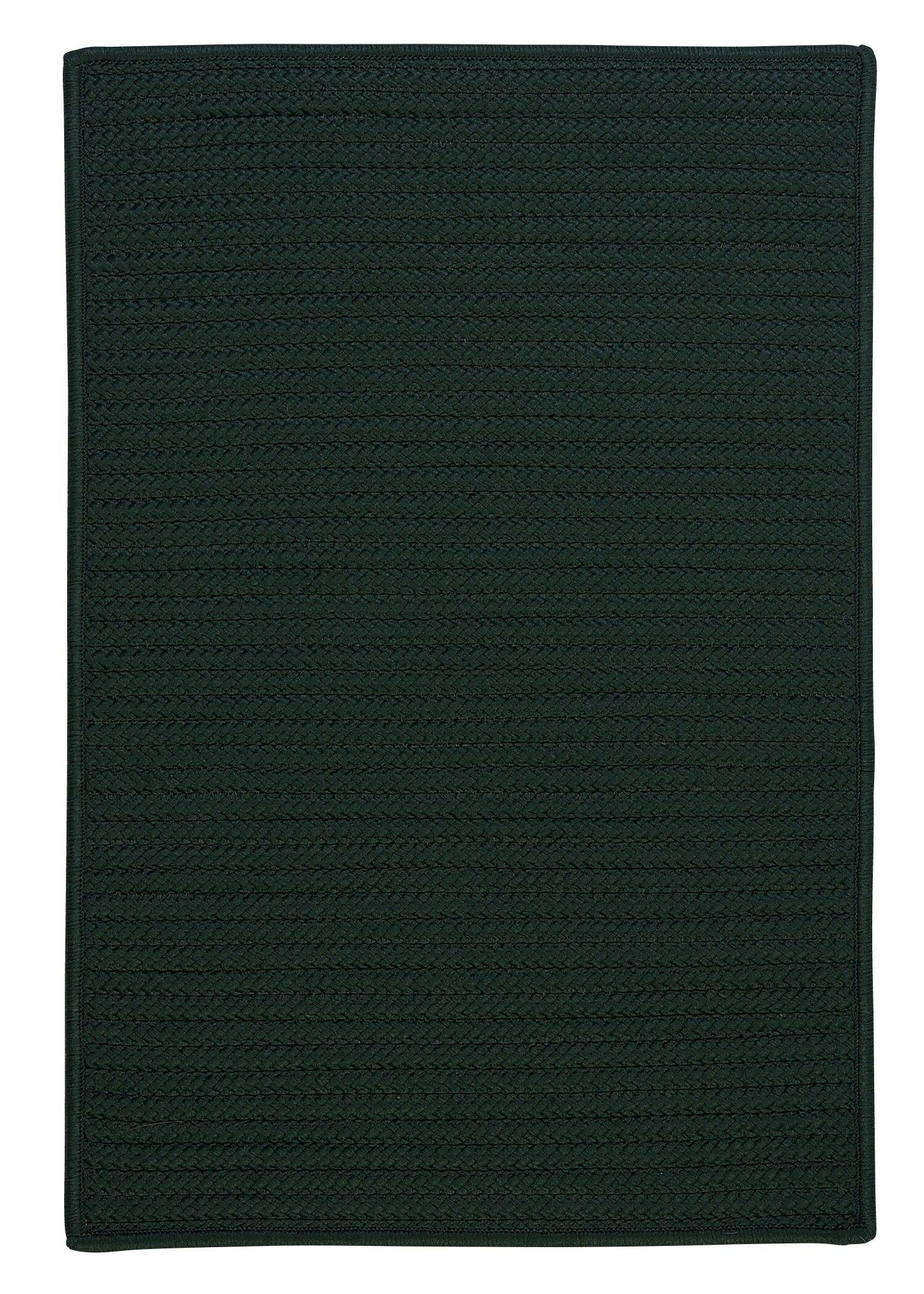 Gilmour Dark Green Solid Indoor/Outdoor Area Rug Rug Size: Rectangle 12' x 15'