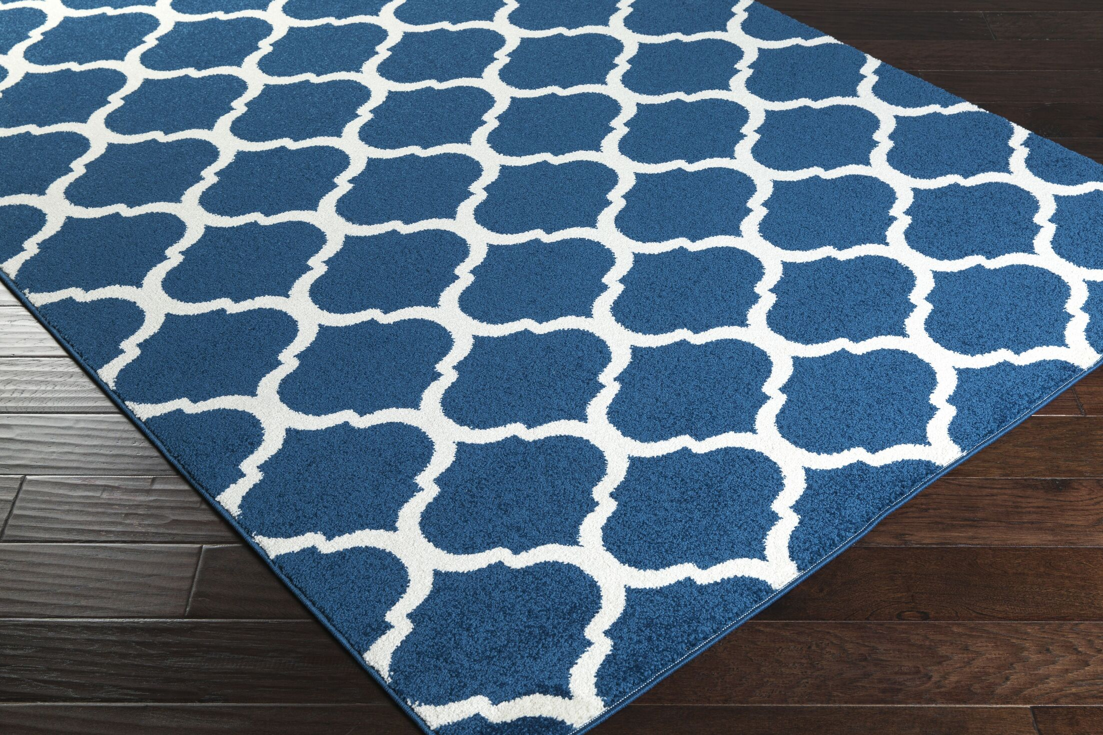 Bogdan Cobalt Area Rug Rug Size: Rectangle 5'3