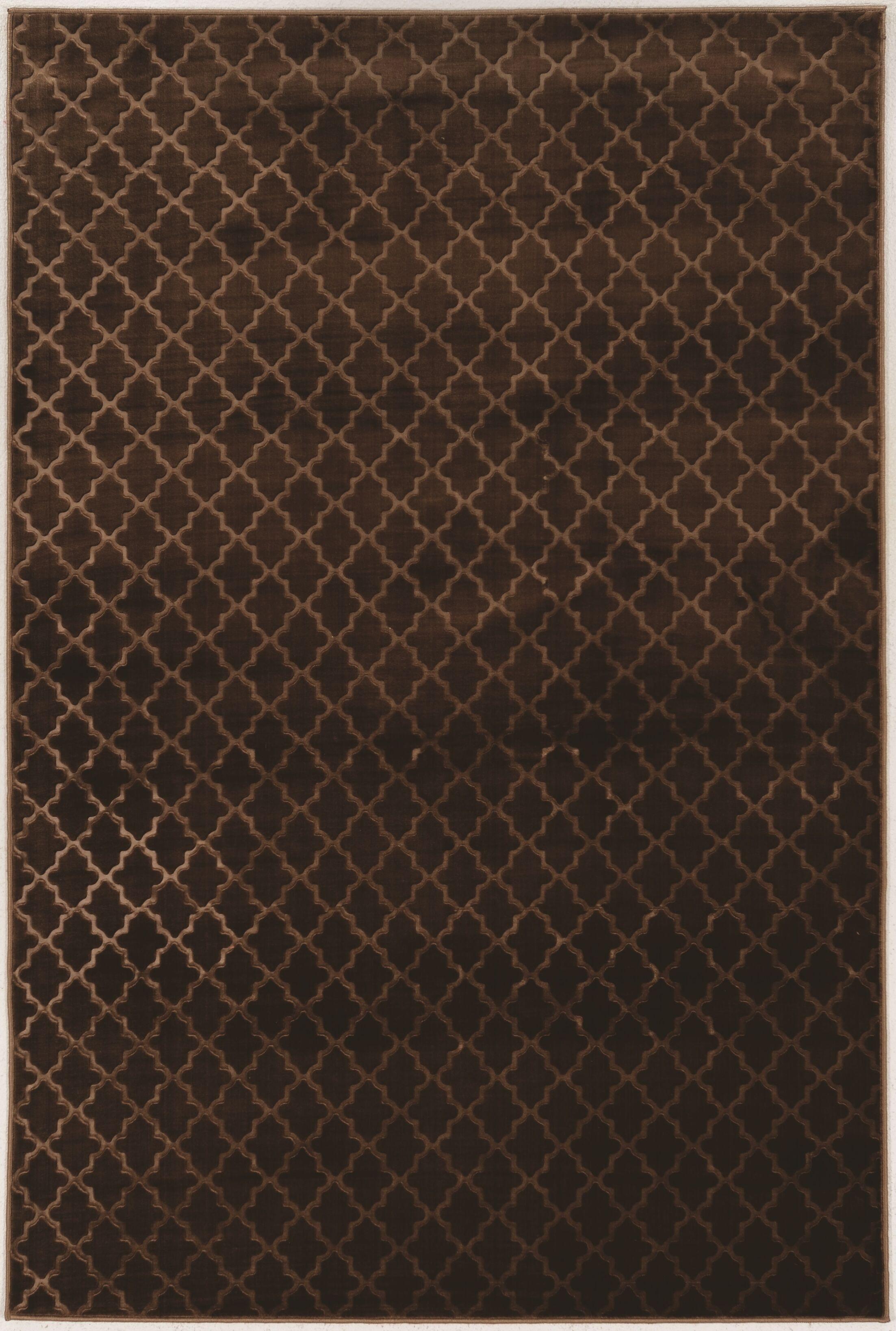 Boone Trellis Brown Area Rug Rug Size: Rectangle 8' x 10'3