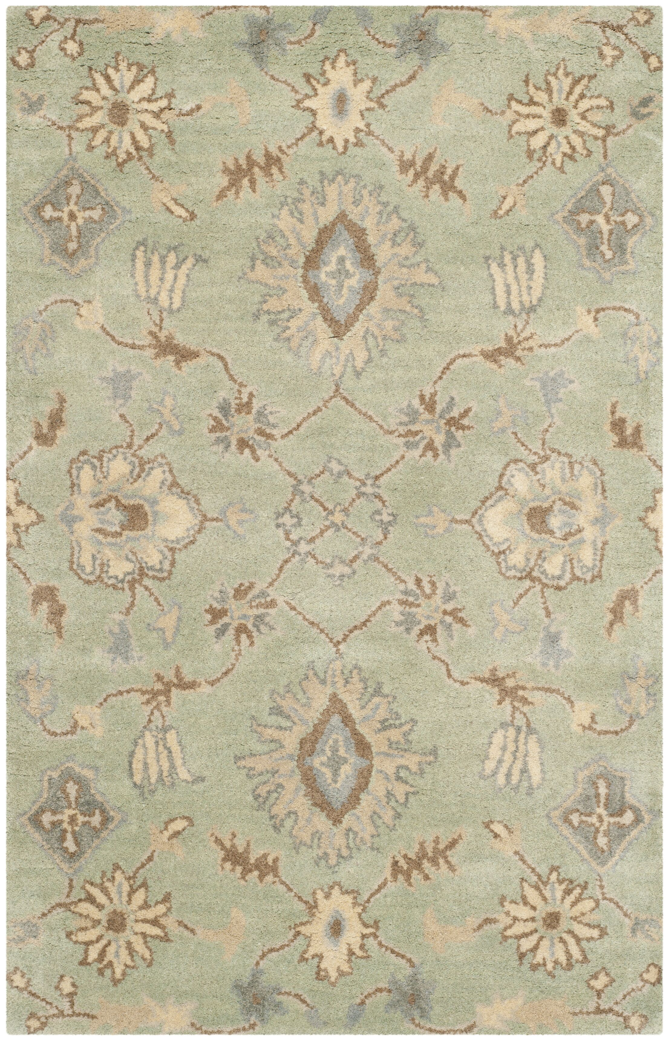 Colesberry Light Green Area Rug Rug Size: Rectangle 4' x 6'