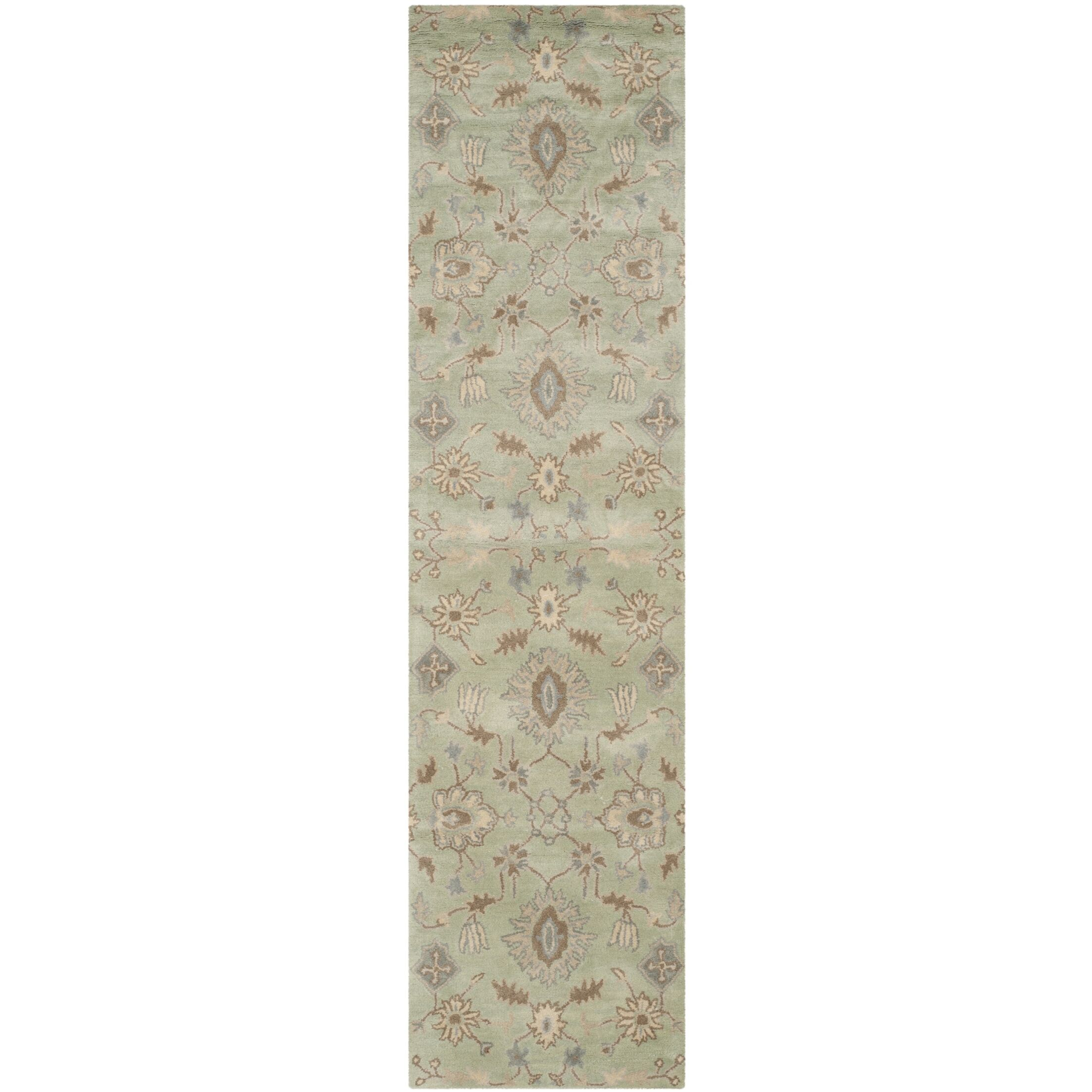 Colesberry Light Green Area Rug Rug Size: Runner 2'3