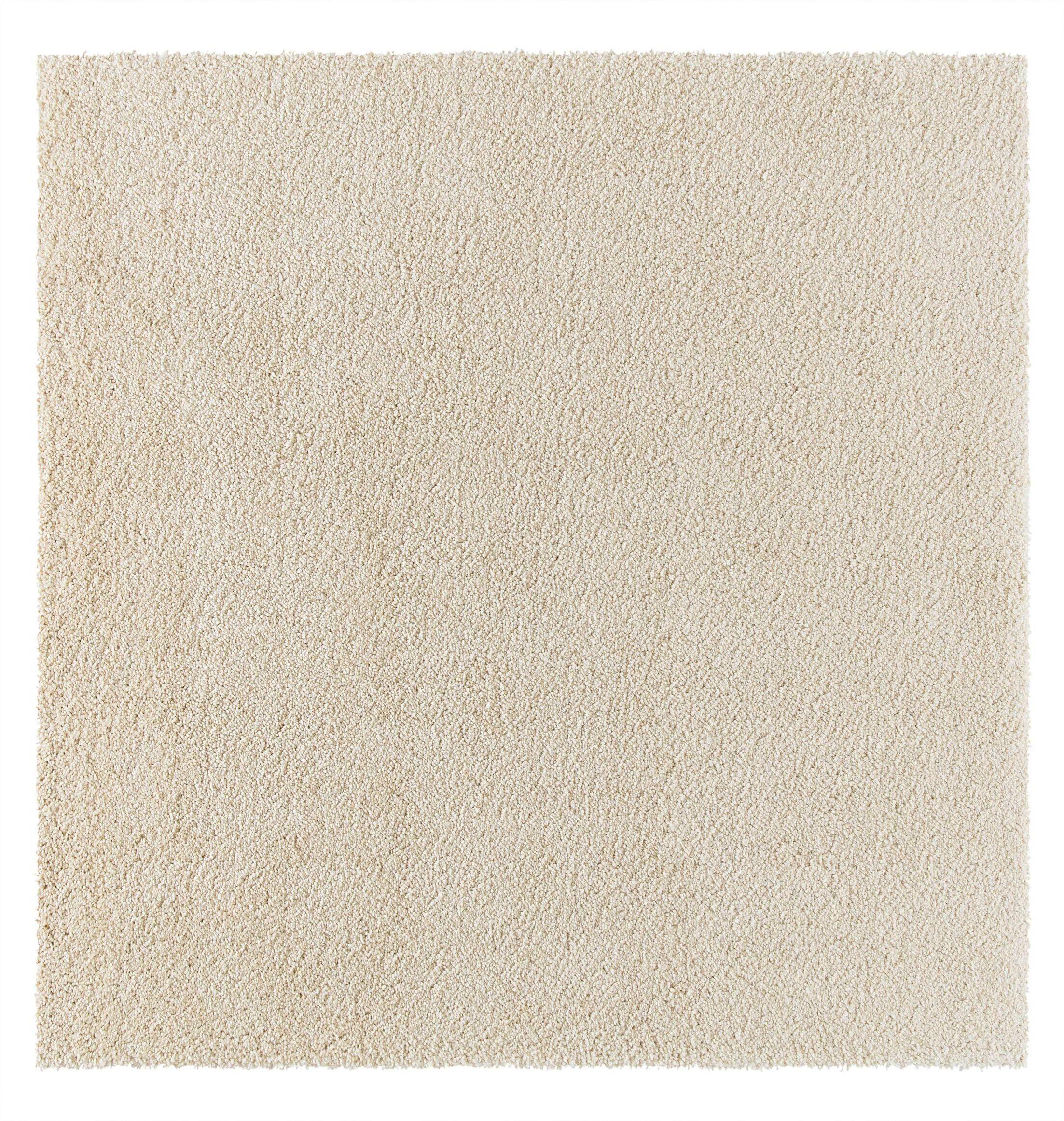 Parrish Cream Area Rug Rug Size: Square 6'7