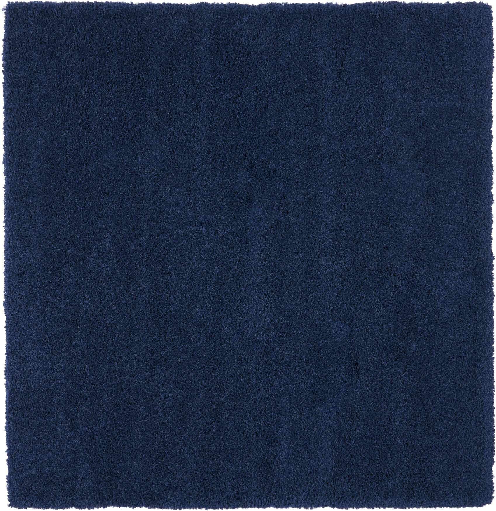 Parrish Navy Area Rug Rug Size: Square 6'7