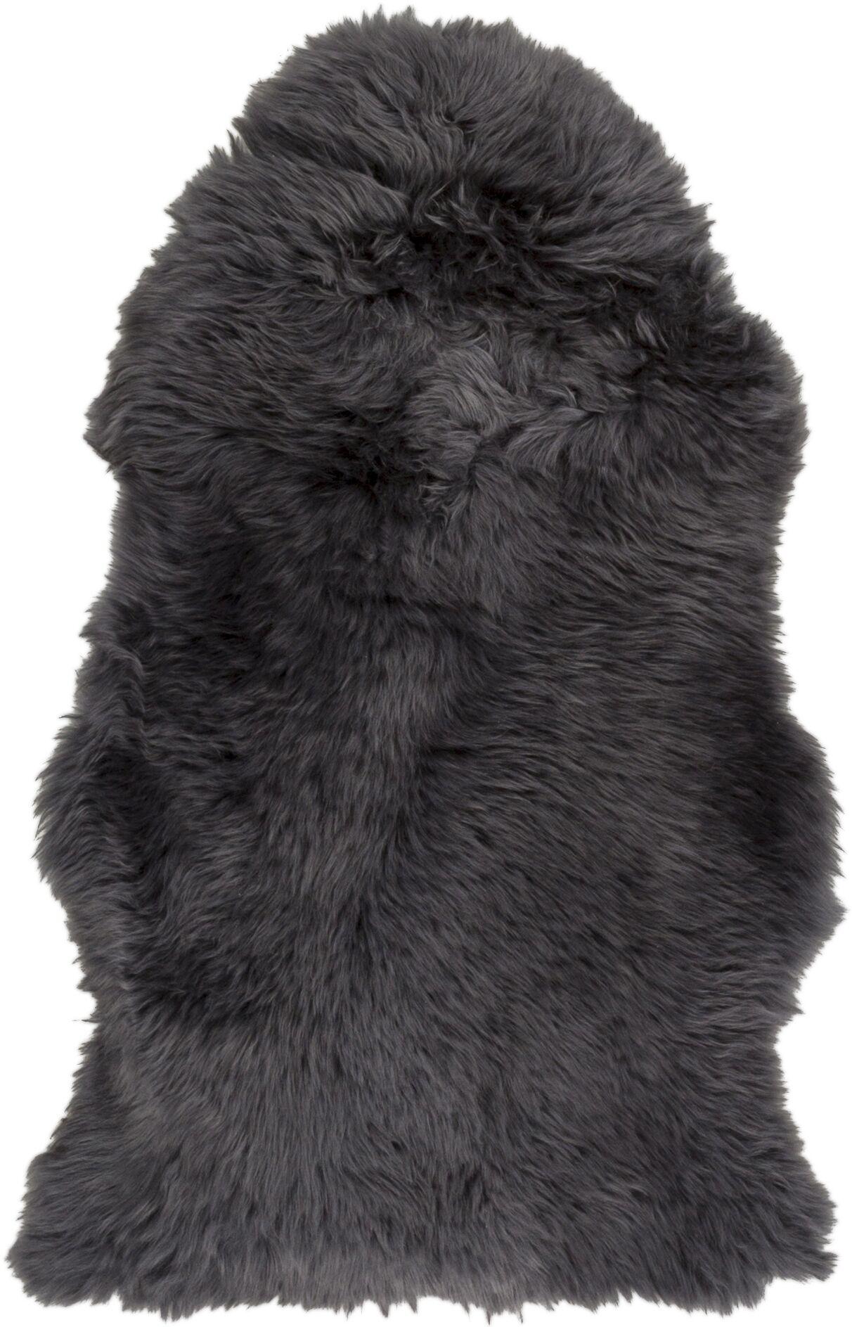 West Hewish Hand-Woven Charcoal Area Rug Rug Size: Rectangle 2' x 3'