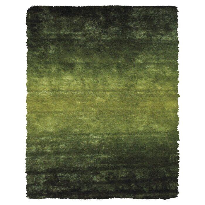 Sapienza Hand-Tufted Dark Green Area Rug Rug Size: Rectangle 4'9