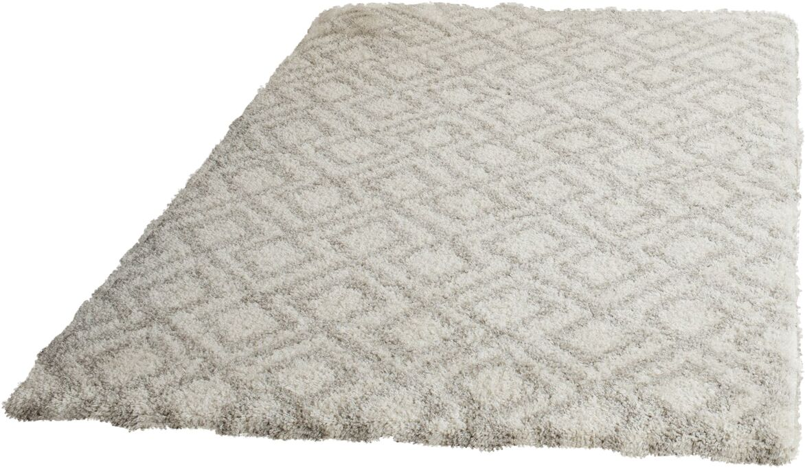 Amicus Ivory/Beige Area Rug Rug Size: Rectangle 4' x 6'