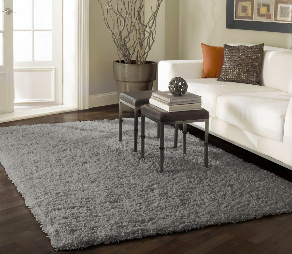 Ashlei Gray Area Rug Rug Size: Rectangle 9'2