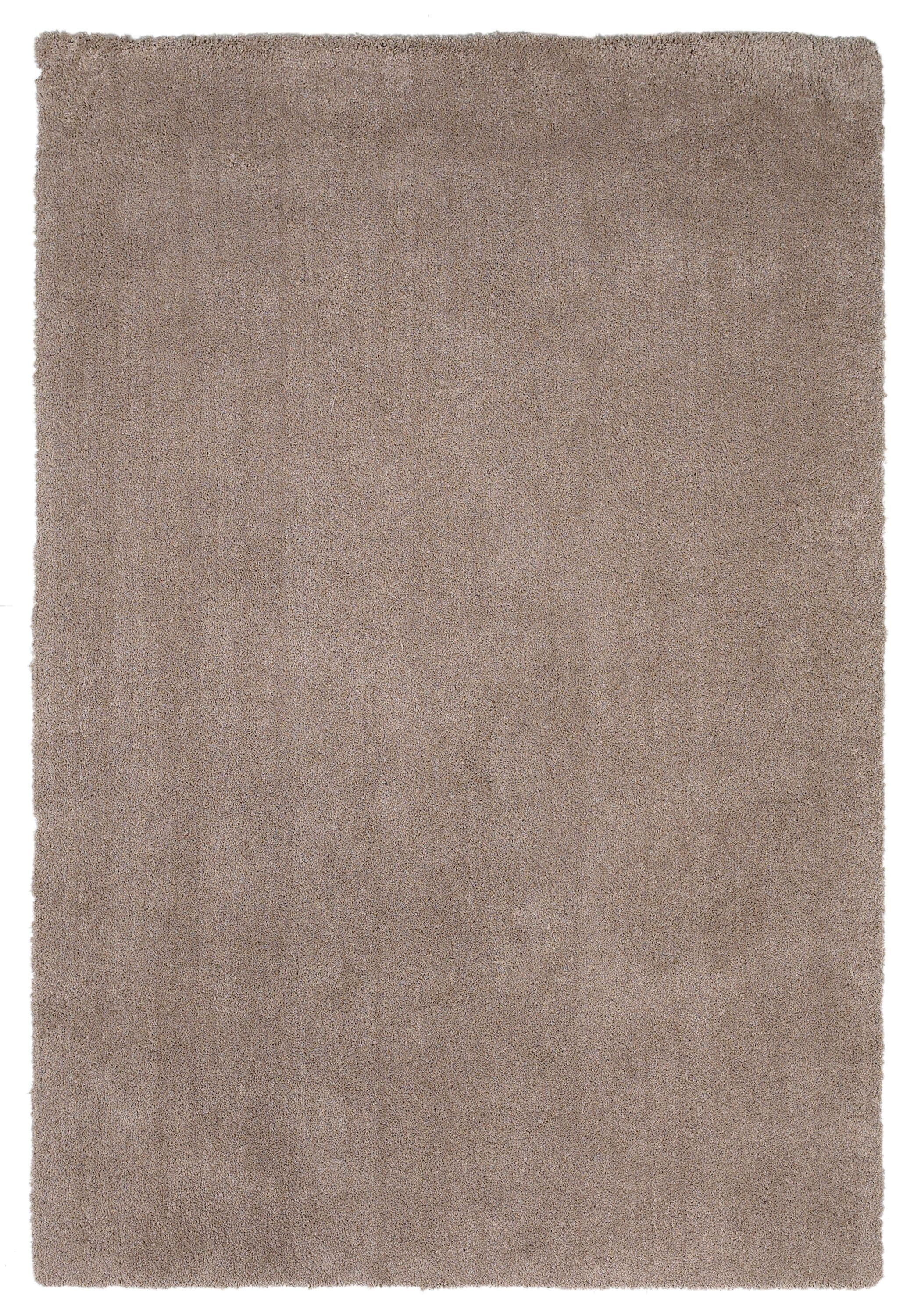 Bouvier Beige Area Rug Rug Size: Rectangle 5' x 7'